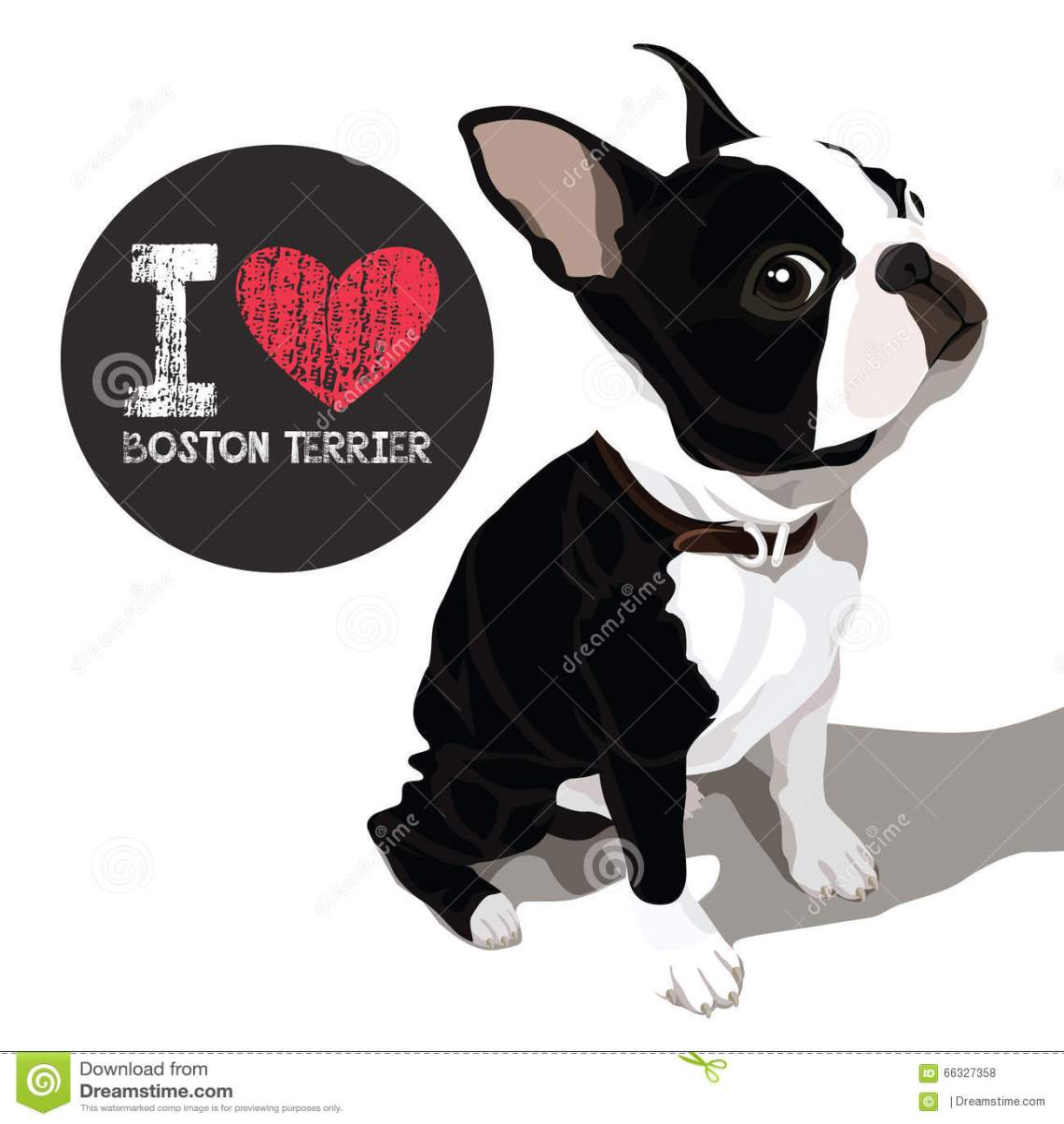 Download I Love Boston Terrier stock vector. Illustration of animal ...