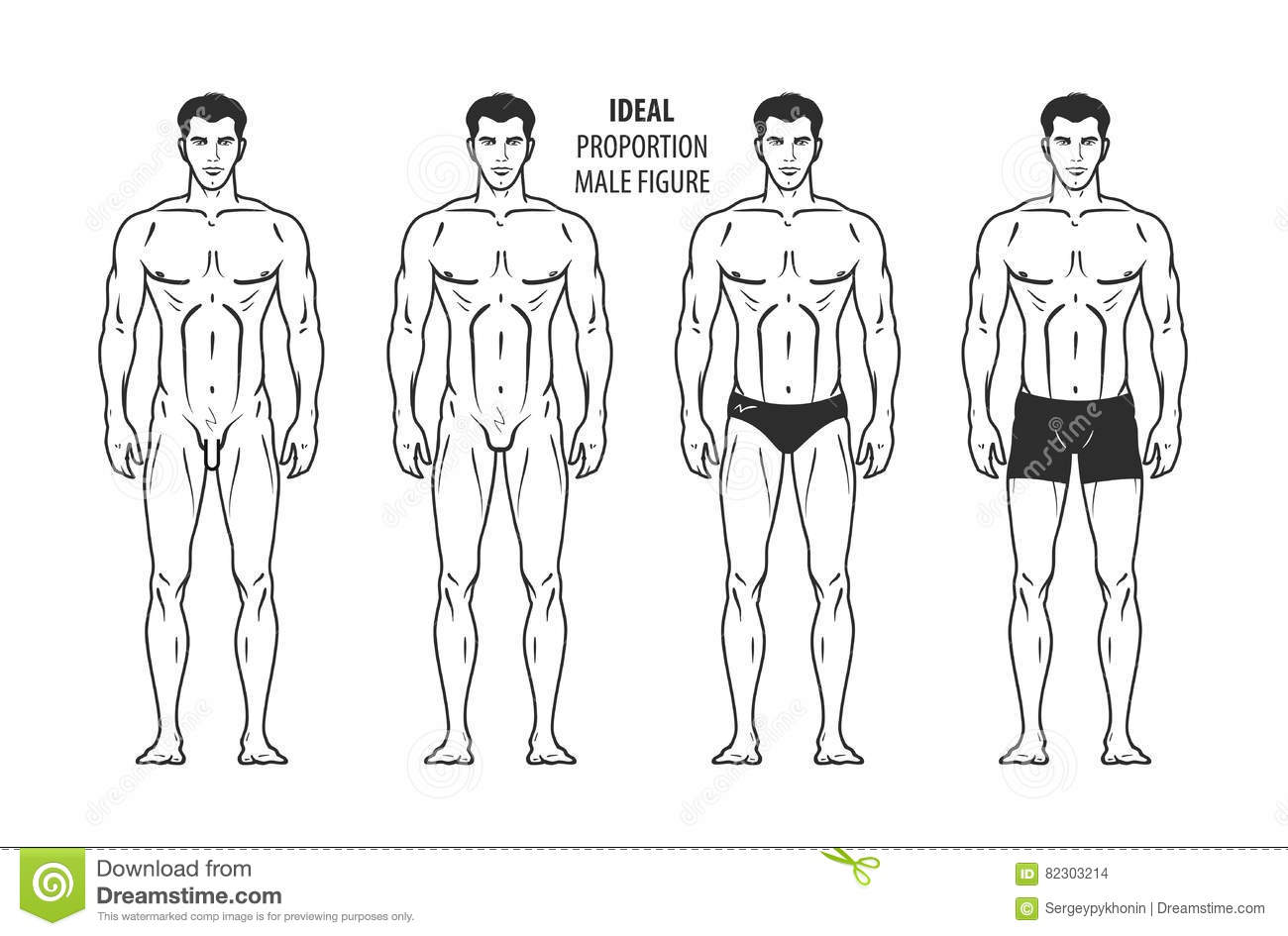 Ideal Proportion Manligt Diagram Hand Dragen Oavkortad