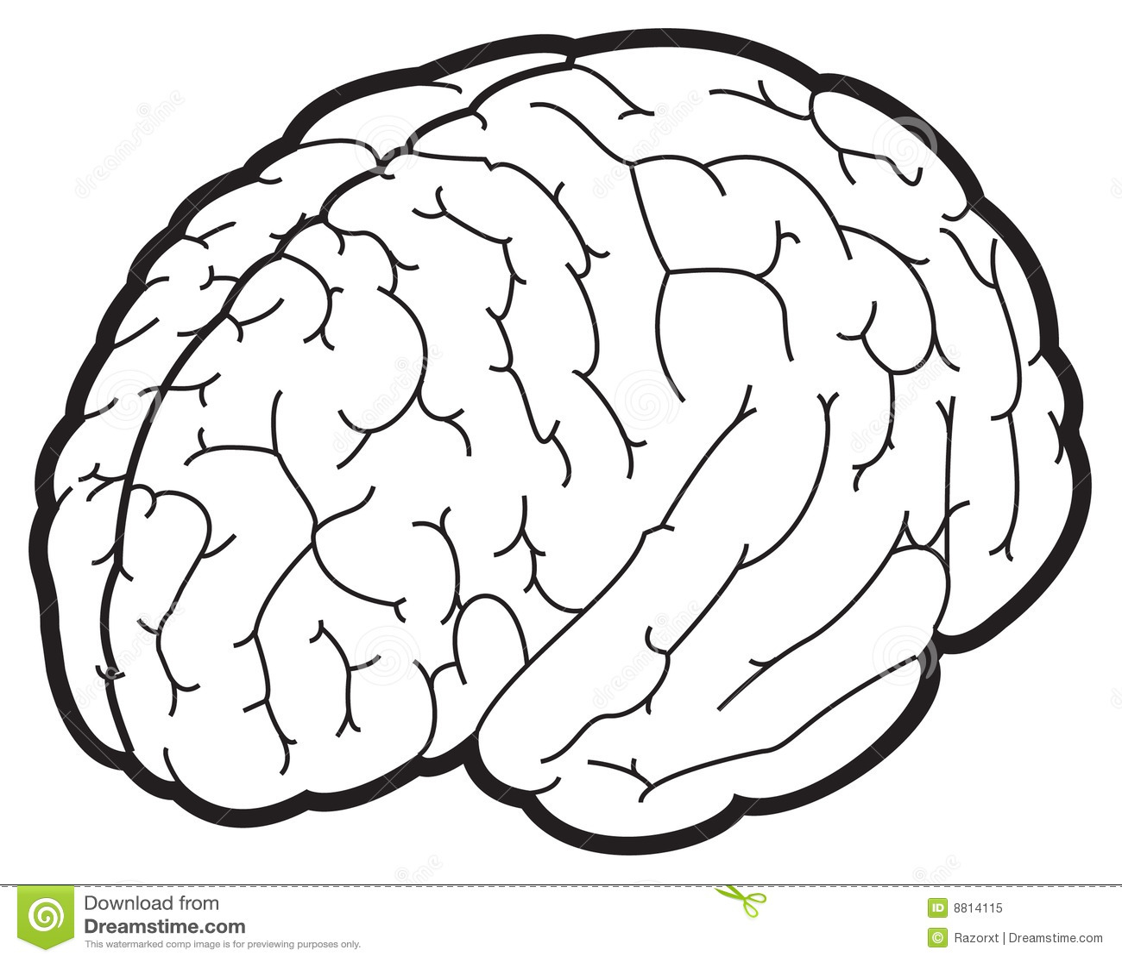 Illustratie Van Hersenen Vector Illustratie Illustratie