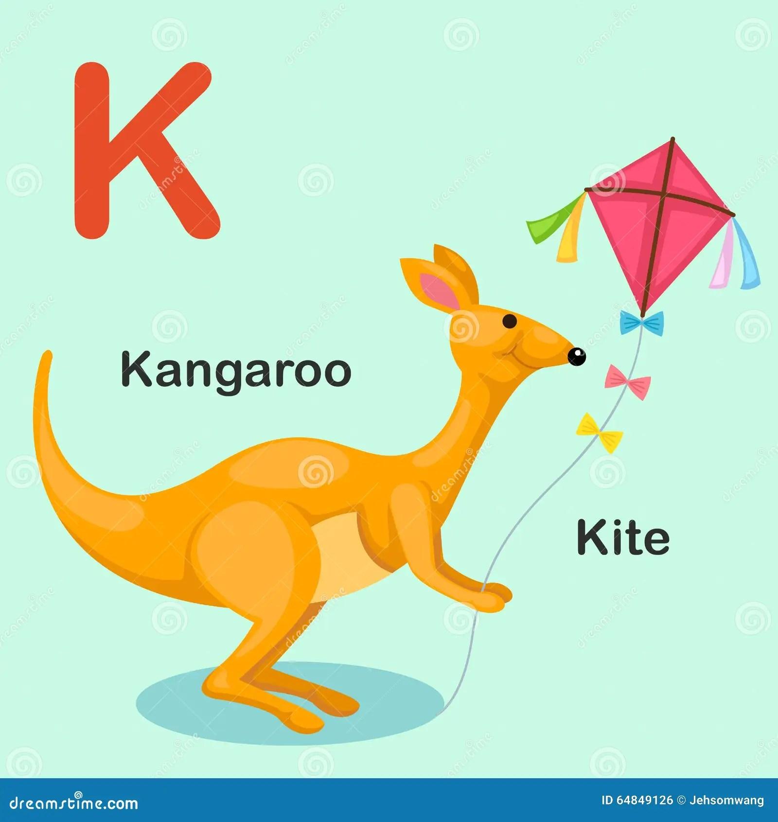 Illustration Animal Alphabet Letter K Kite Kangaroo Stock