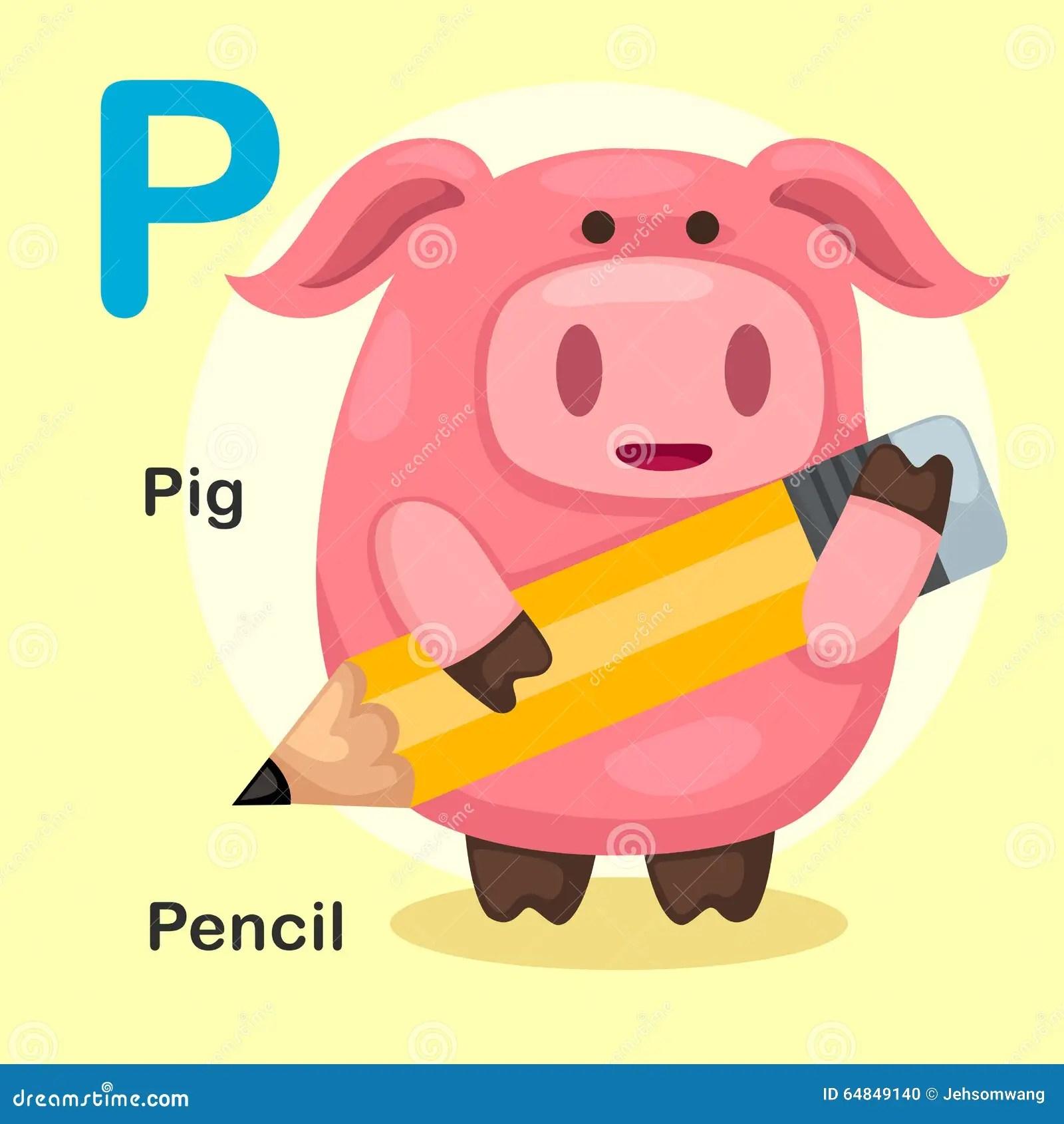 Alphabet Letter P Pig Stock Illustrations 268 Alphabet