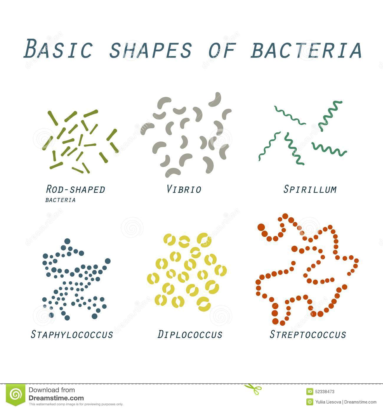 Illustration Of Basic Shapes Of Bacteria In Flat Design