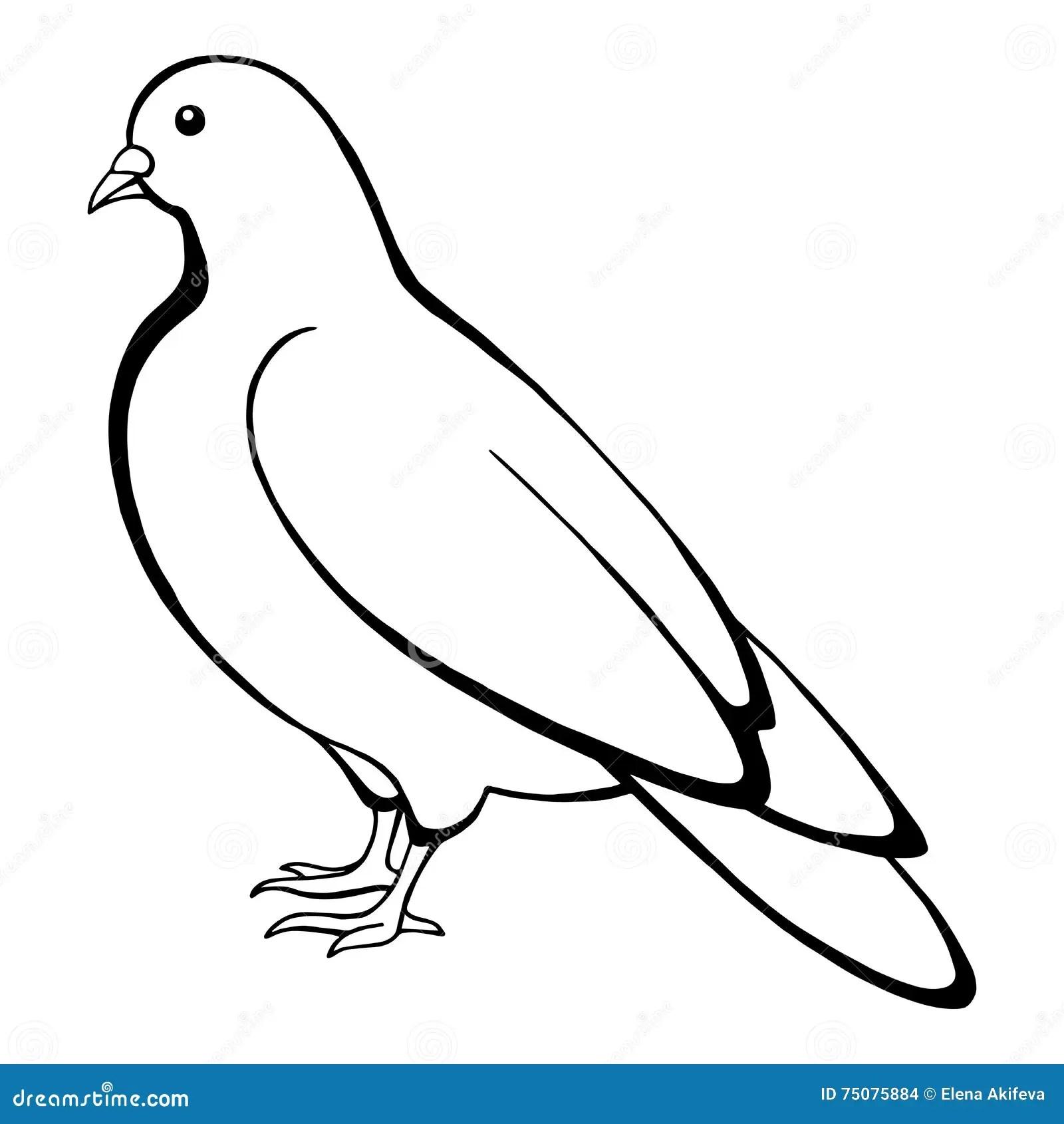 Illustration Blanche De Croquis De Noir D Oiseau De
