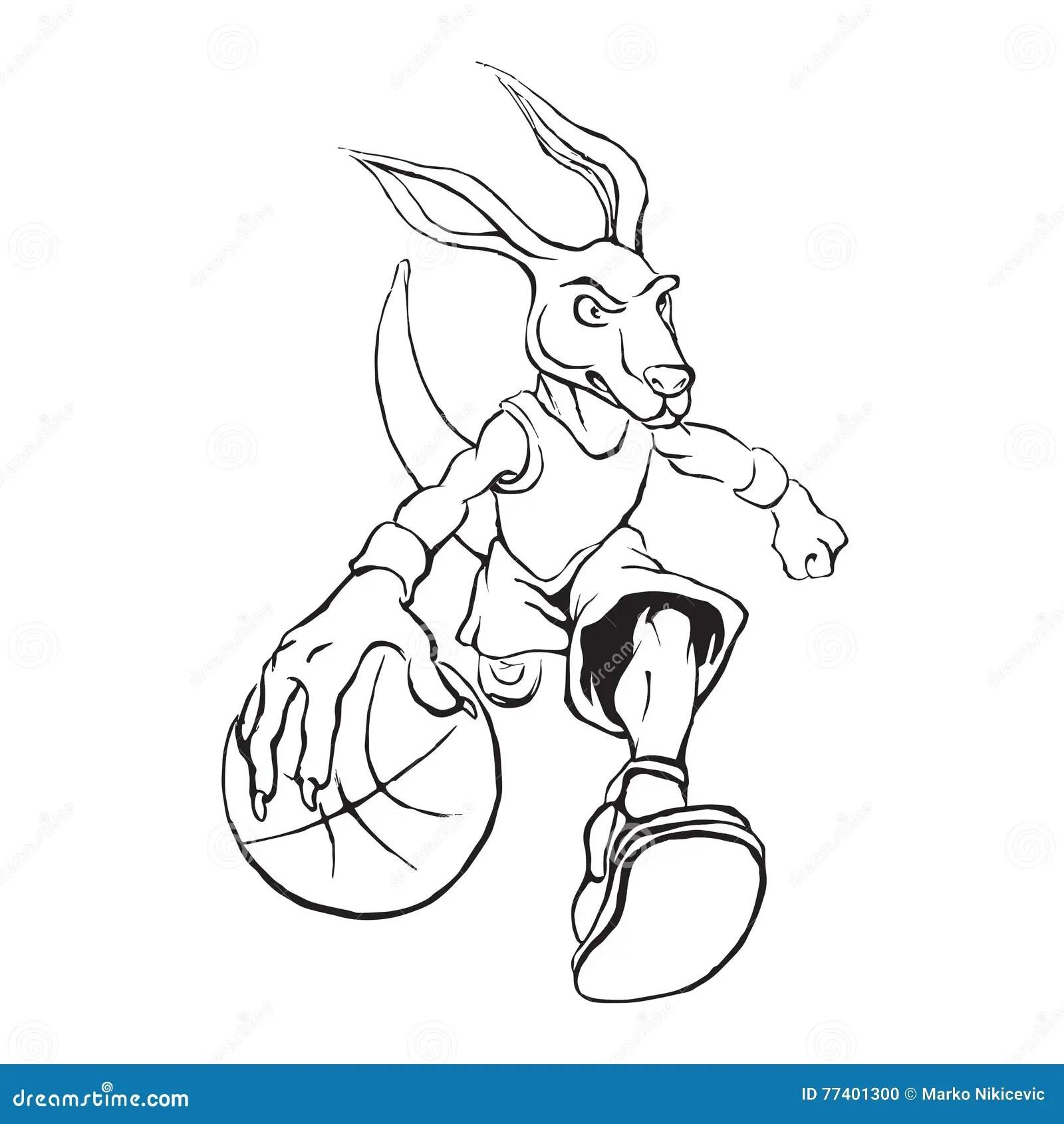 Illustration De Joueur De Basket De Kangourou Illustration