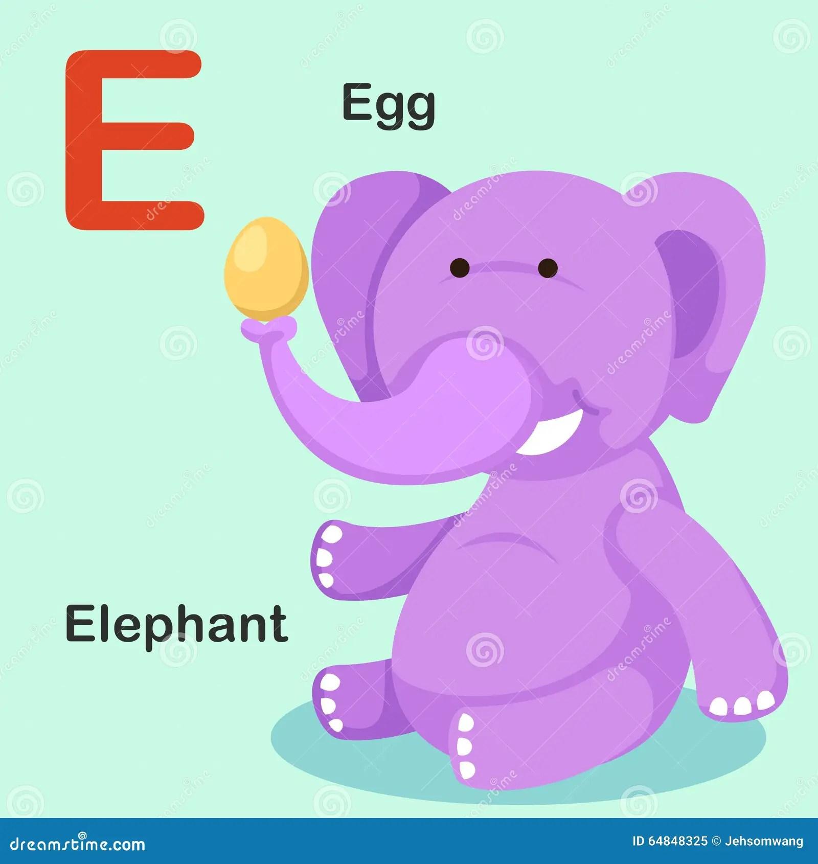 Illustration Isolated Animal Alphabet Letter E Egg