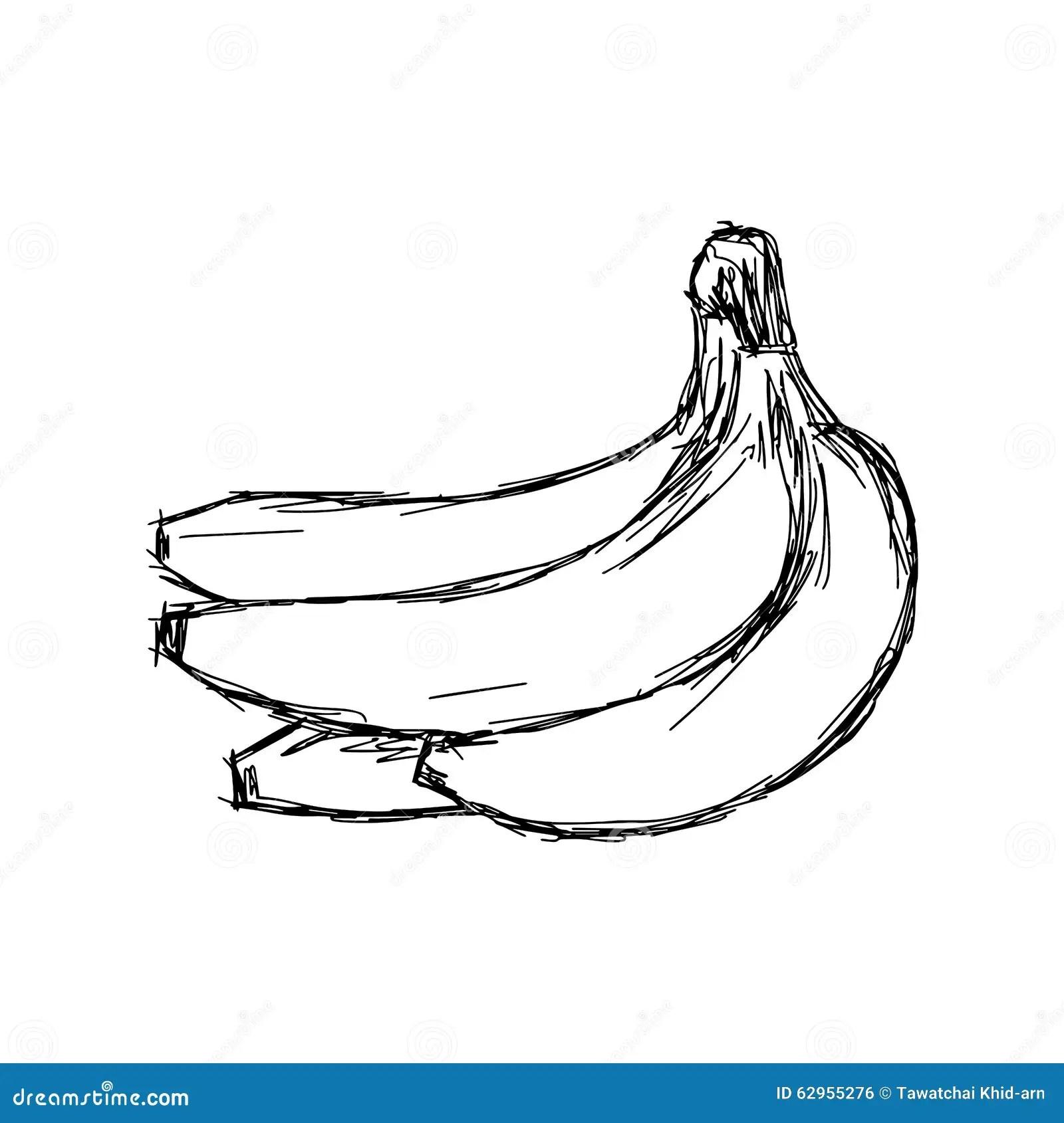 Vector Illustration Of Banana Vector Illustration