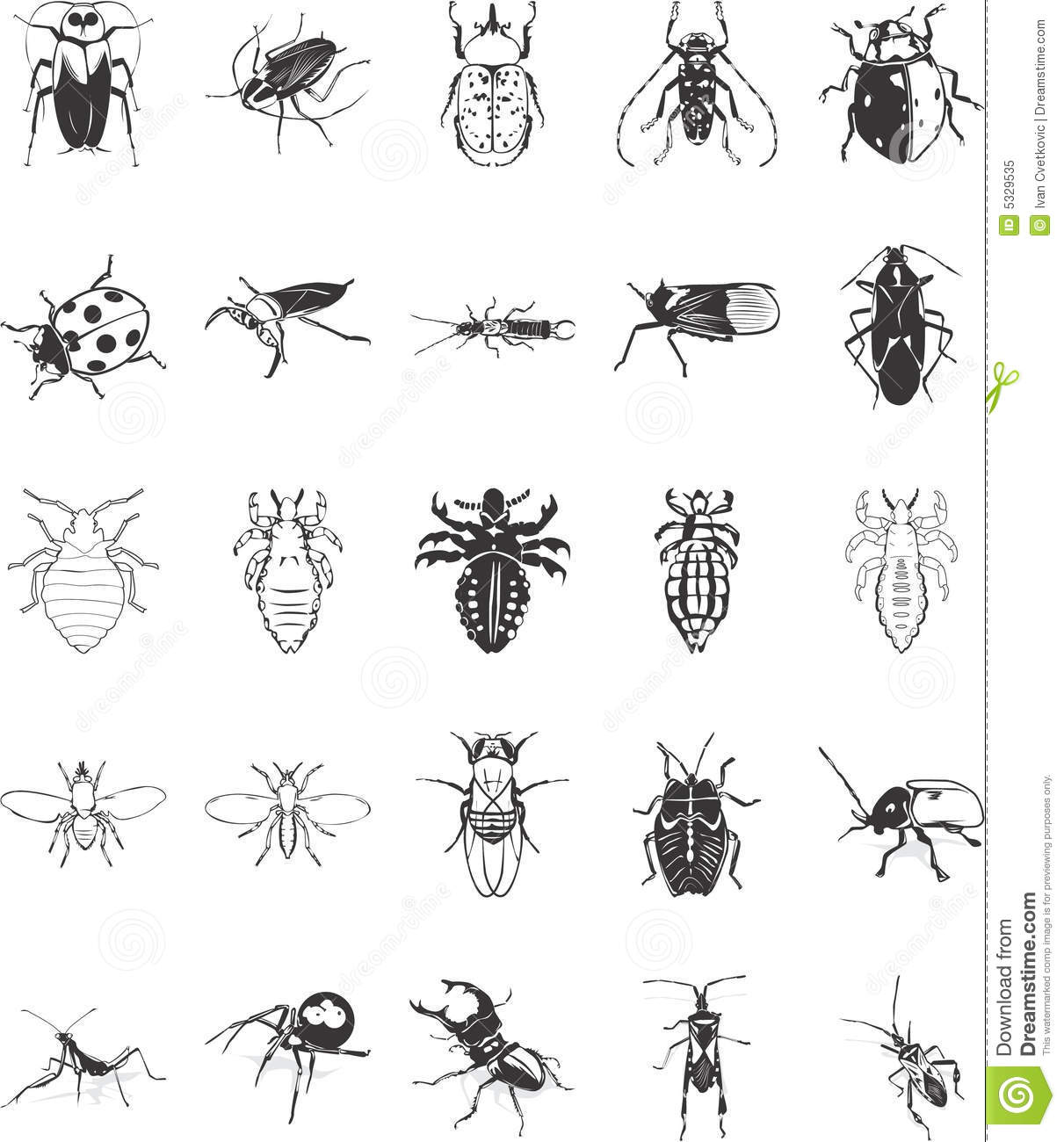Illustrations Of Bugs Royalty Free Stock Photo