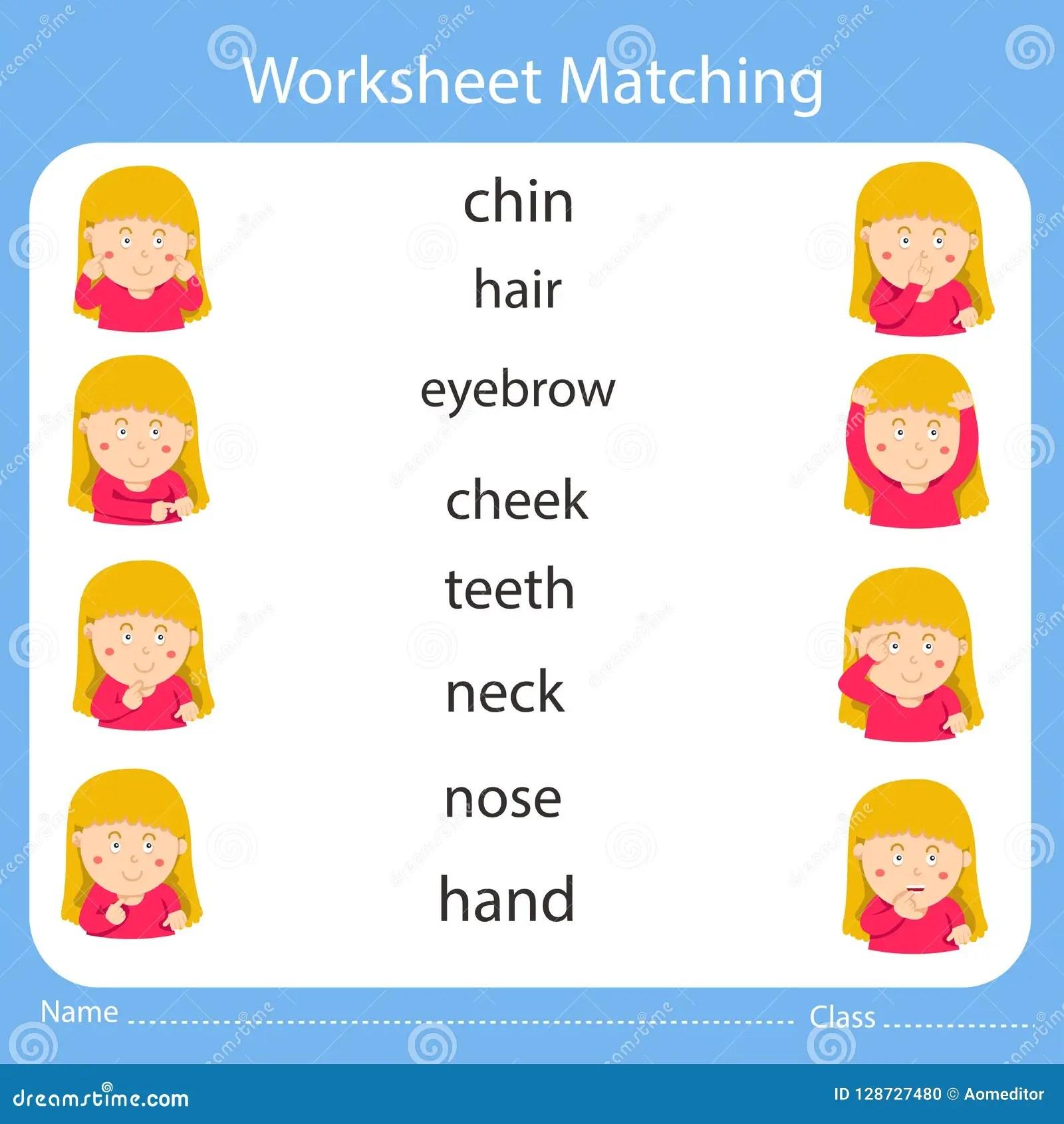 Illustrator Worksheet Matching Body Part Stock Vector