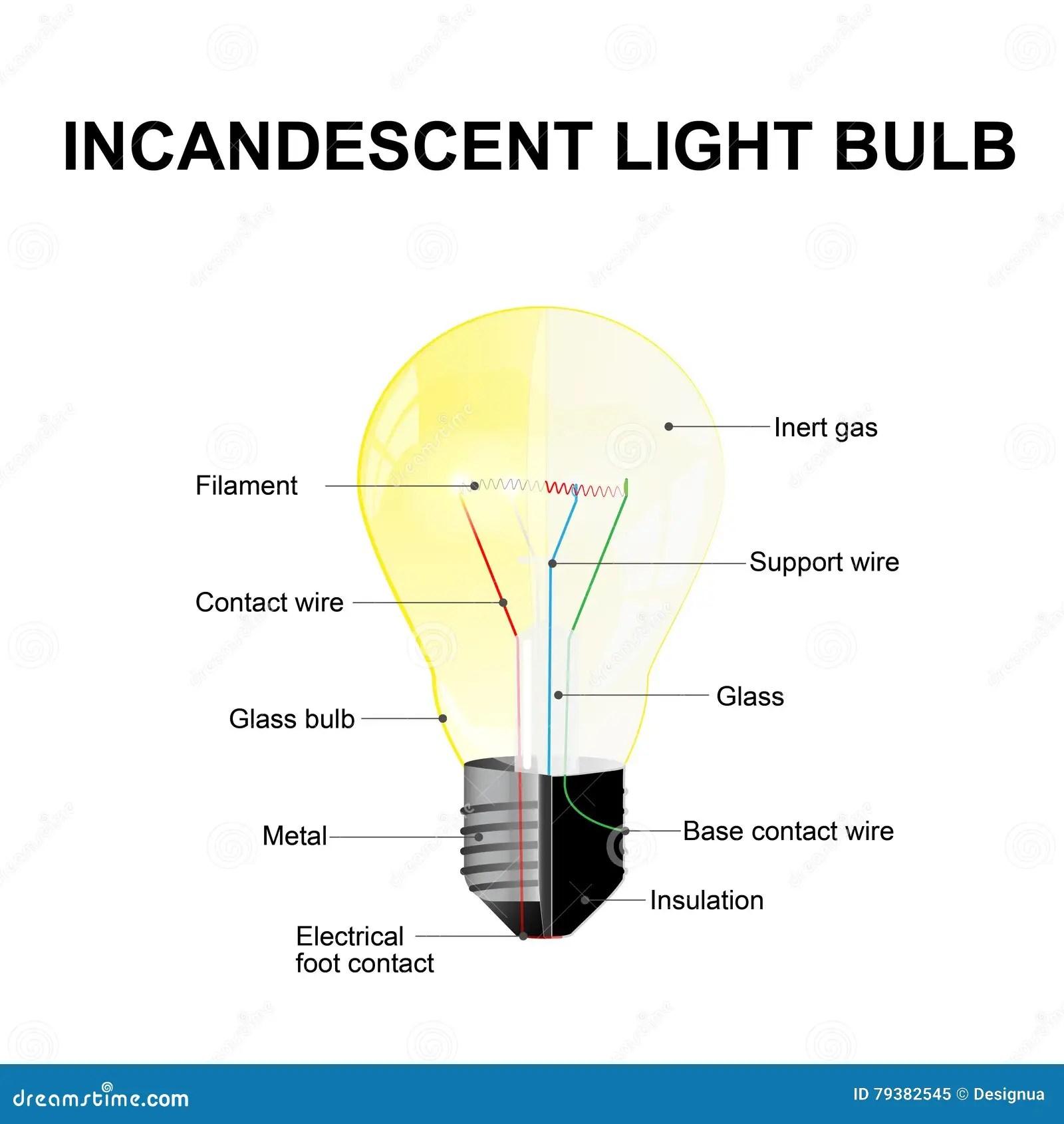 Incandescent Light Bulb Stock Vector Illustration Of