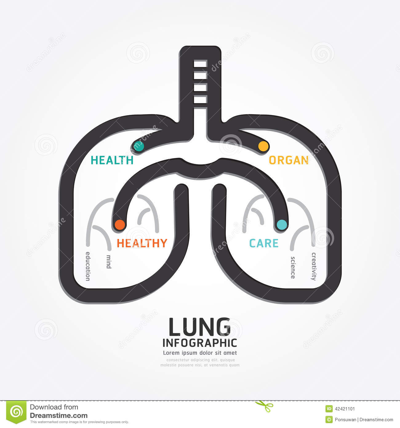 Infographics Vector Lung Design Organ Concept Diagram Line