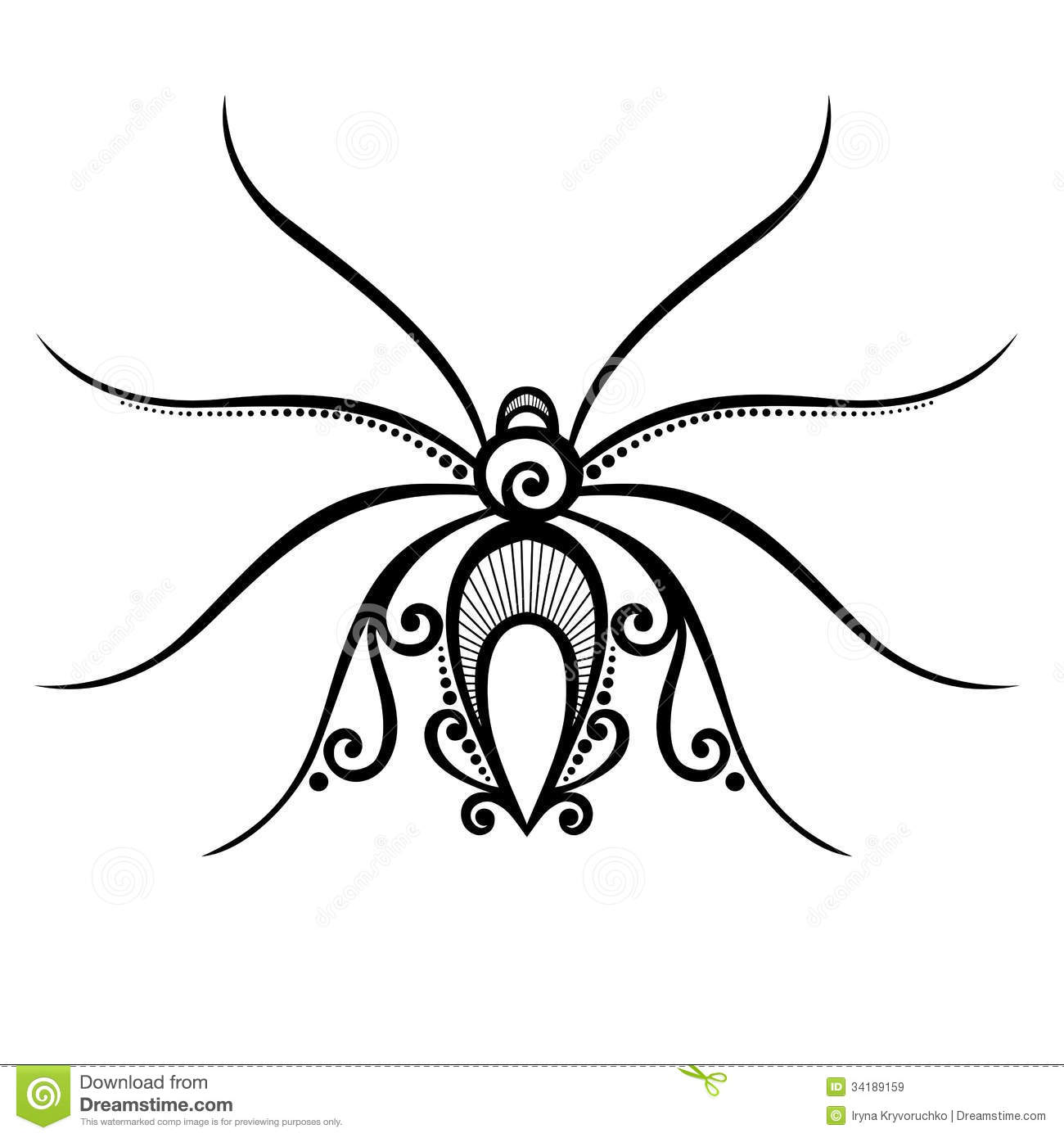 Insect Spyder Royalty Free Stock Images