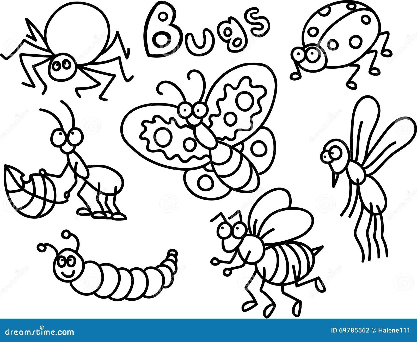 Insectes Colorant La Page Illustration Stock Illustration Du Mouche