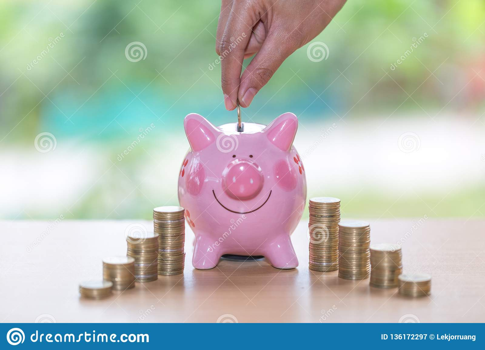 Inserting A Coin Into A Piggy Bank Piggy Bank With Growth