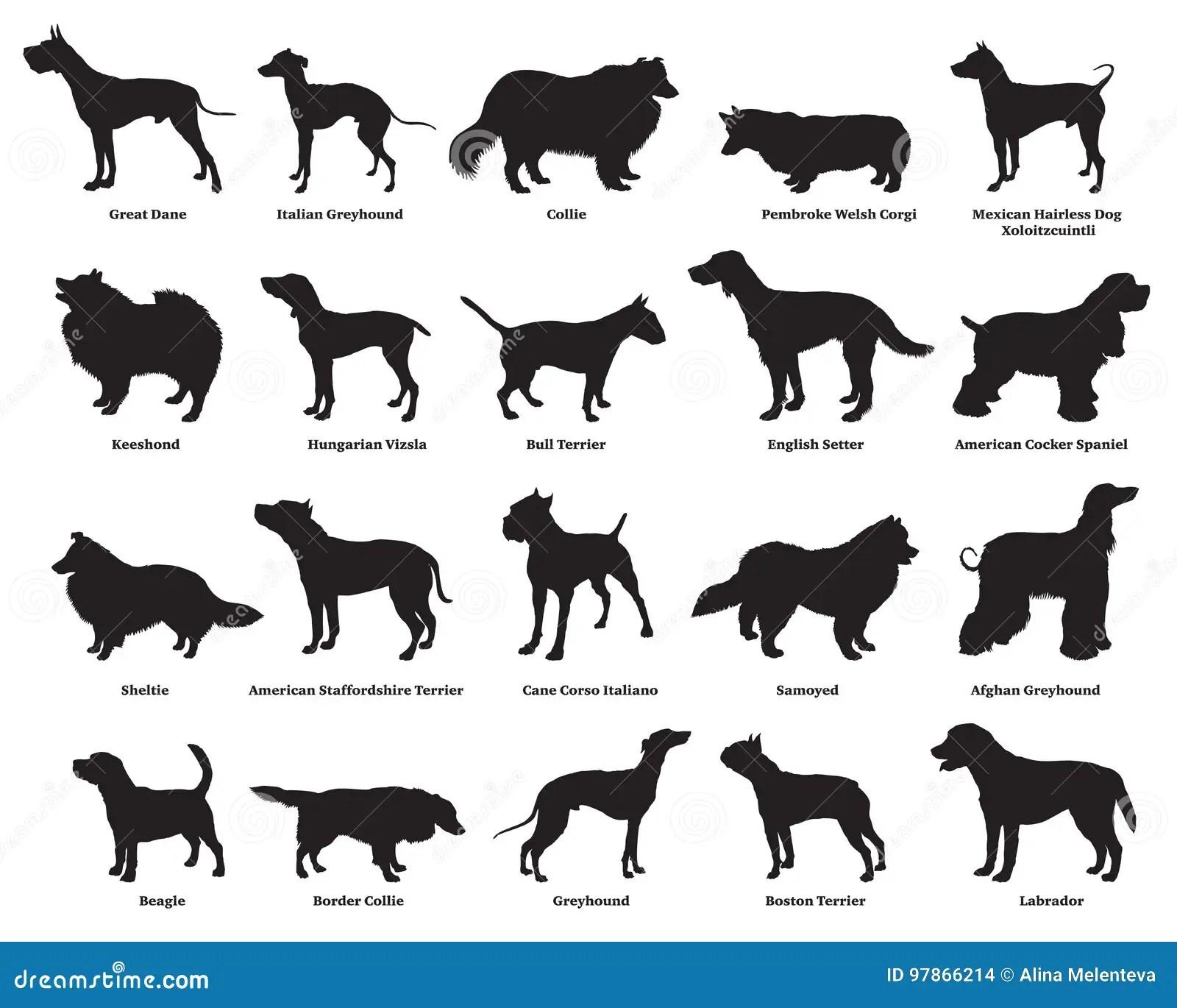 Insieme Dei Cani Silhouettes 2 Illustrazione Vettoriale