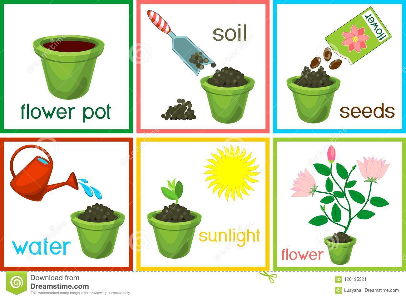 Instructions On How To Plant Flower In Six Easy Steps With