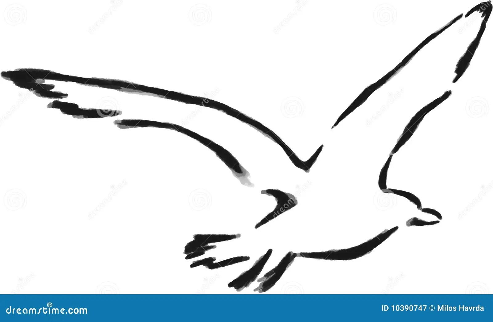 Isolated Outline Seagull Stock Illustration Illustration