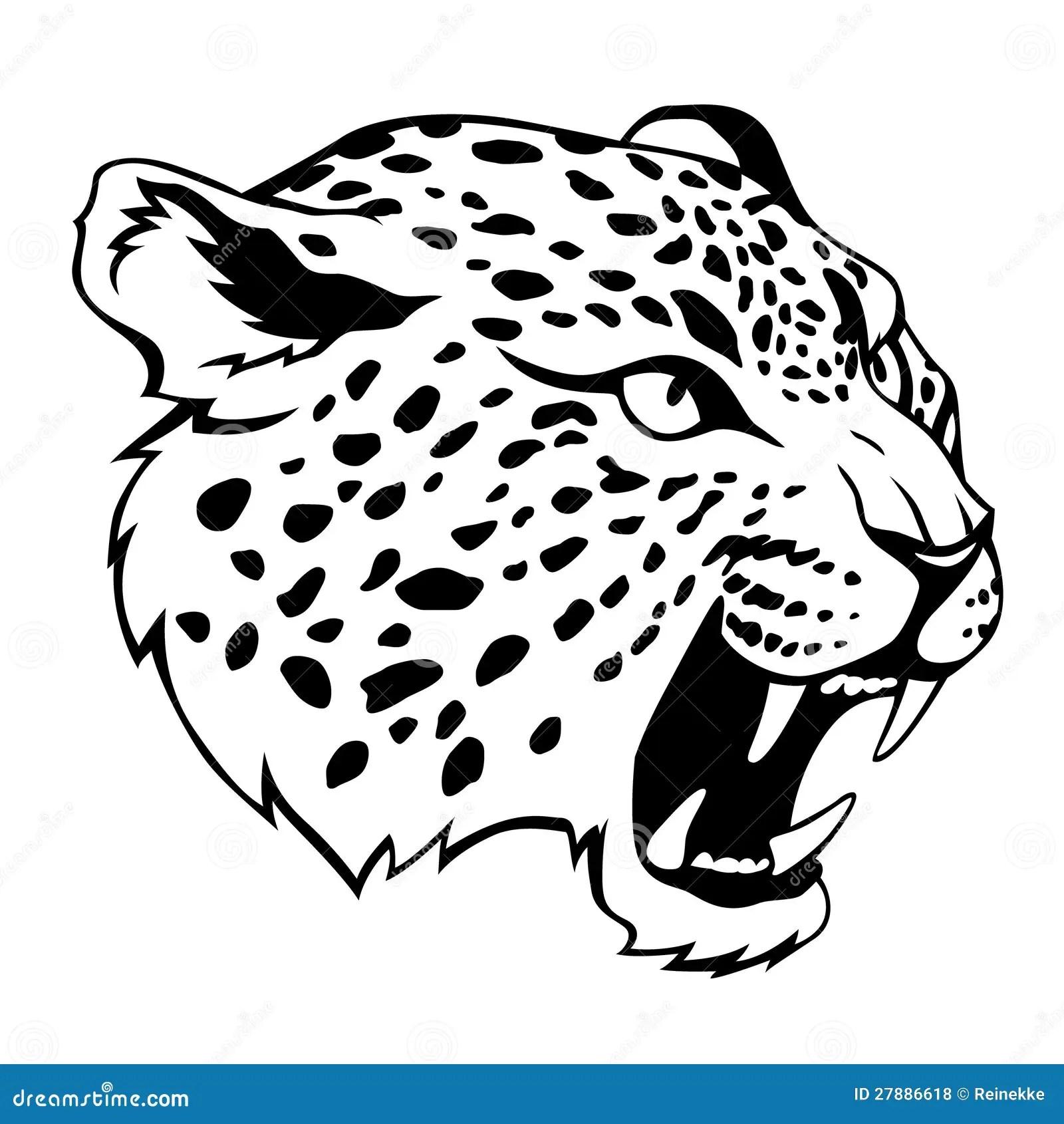 Jaguar Head Stock Vector Illustration Of Power Danger