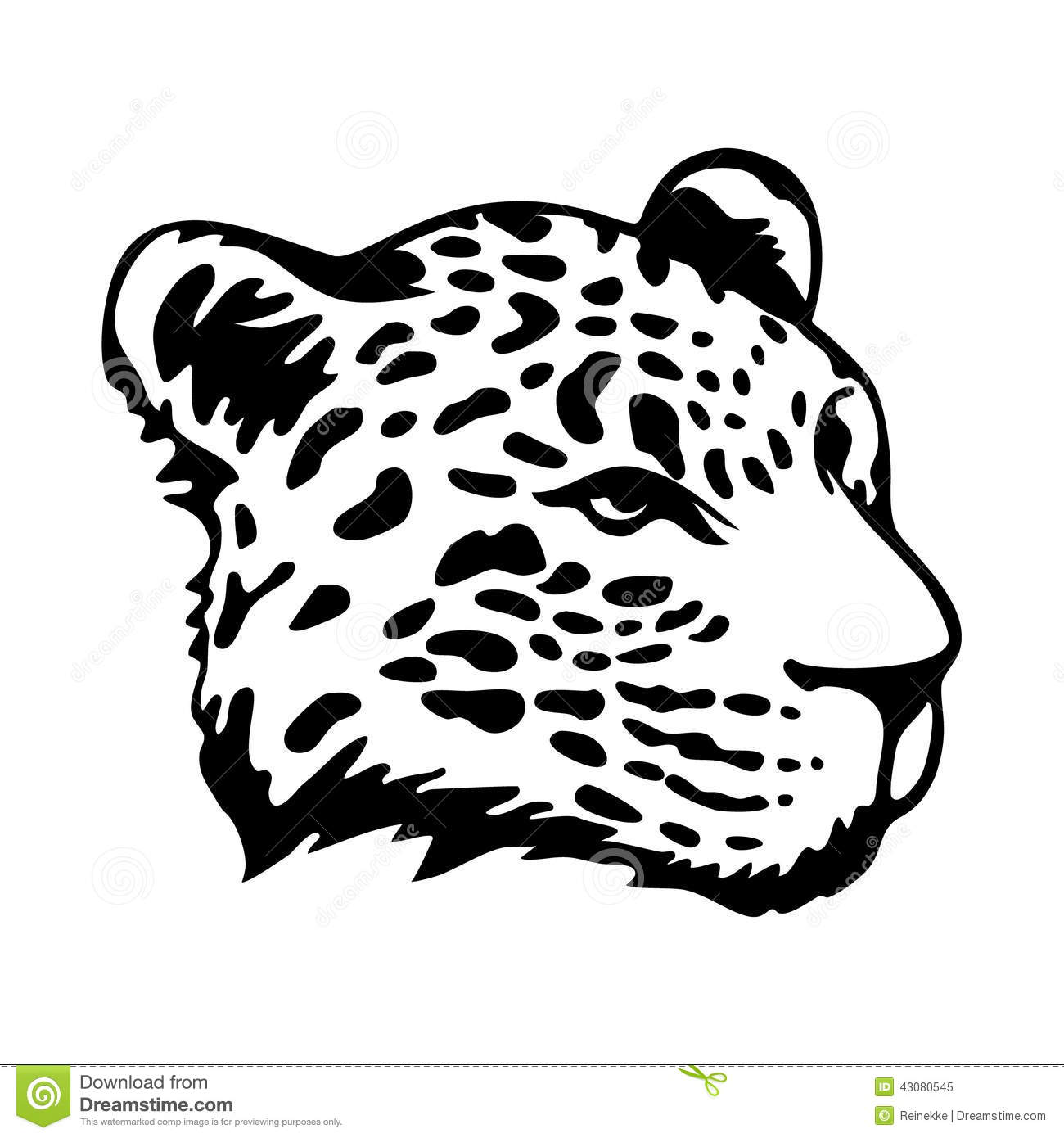 Jaguars Head Stock Vector Illustration Of Graphic