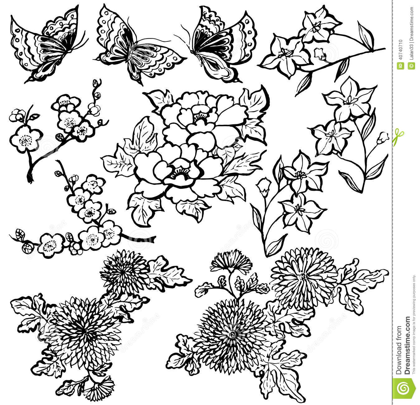 Japanese Flowers Stock Vector Illustration Of Japanese