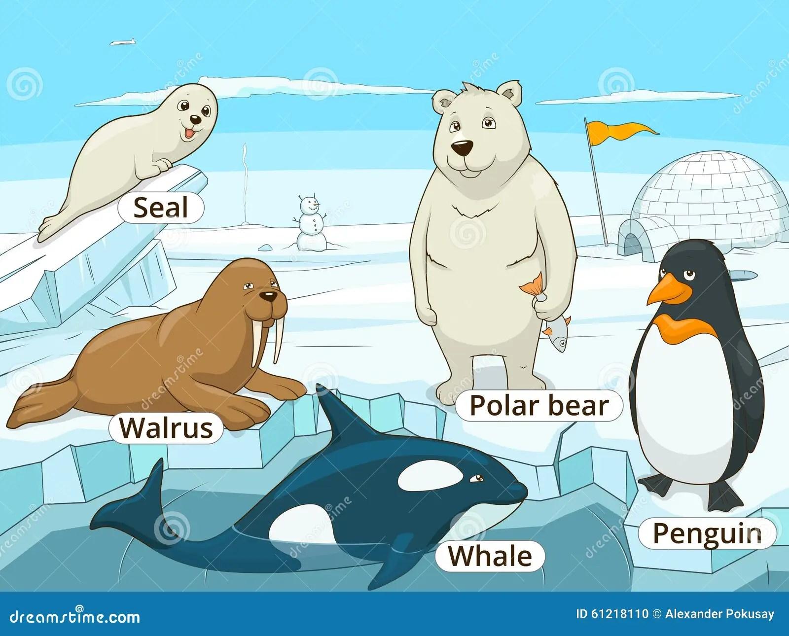 Juego Educativo De Los Animales Articos Para El Vector De