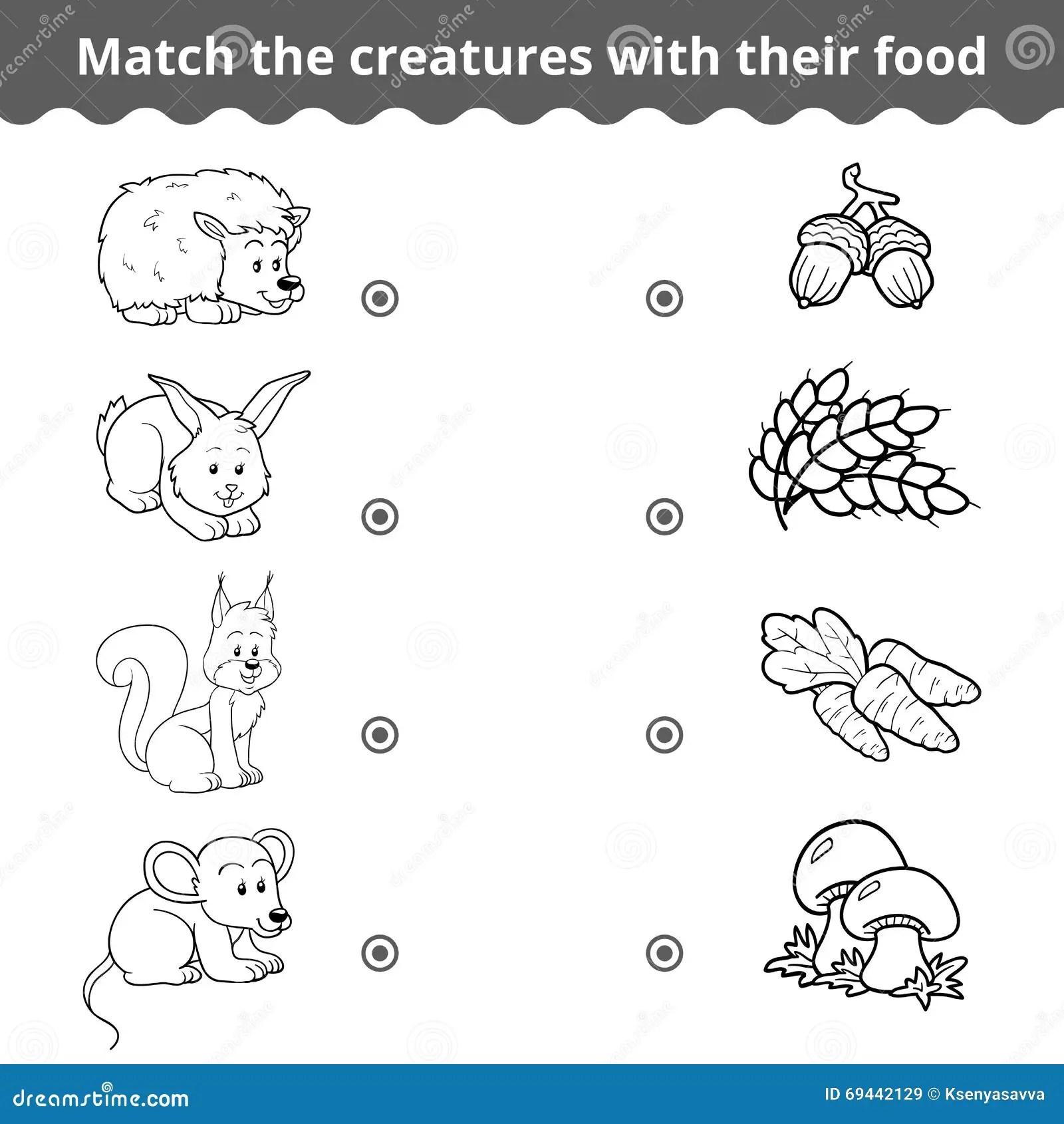 Animales Del Bosque Para Ninos