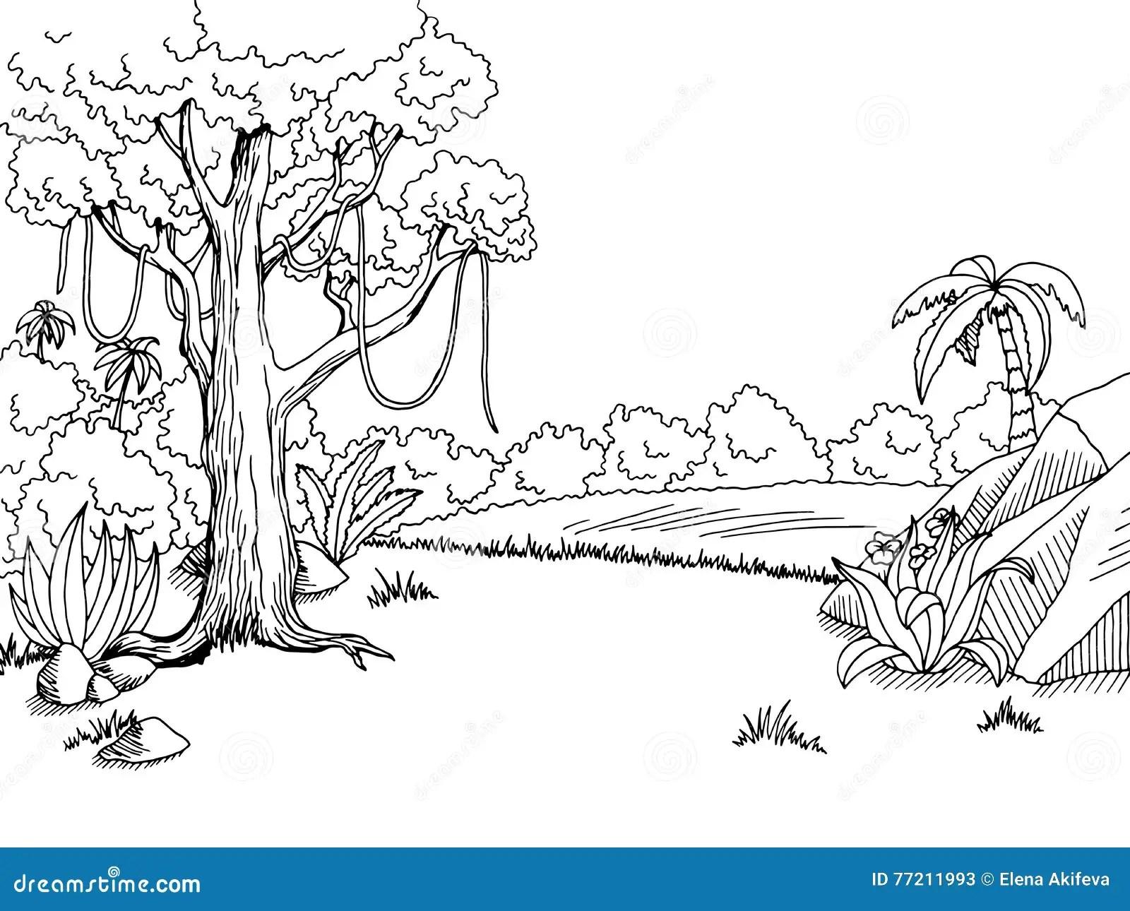 Jungle Forest Graphic Art Black White Landscape Sketch