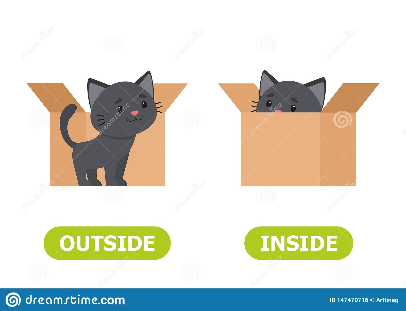 Kitten Inside The Box And Outside Illustration Of