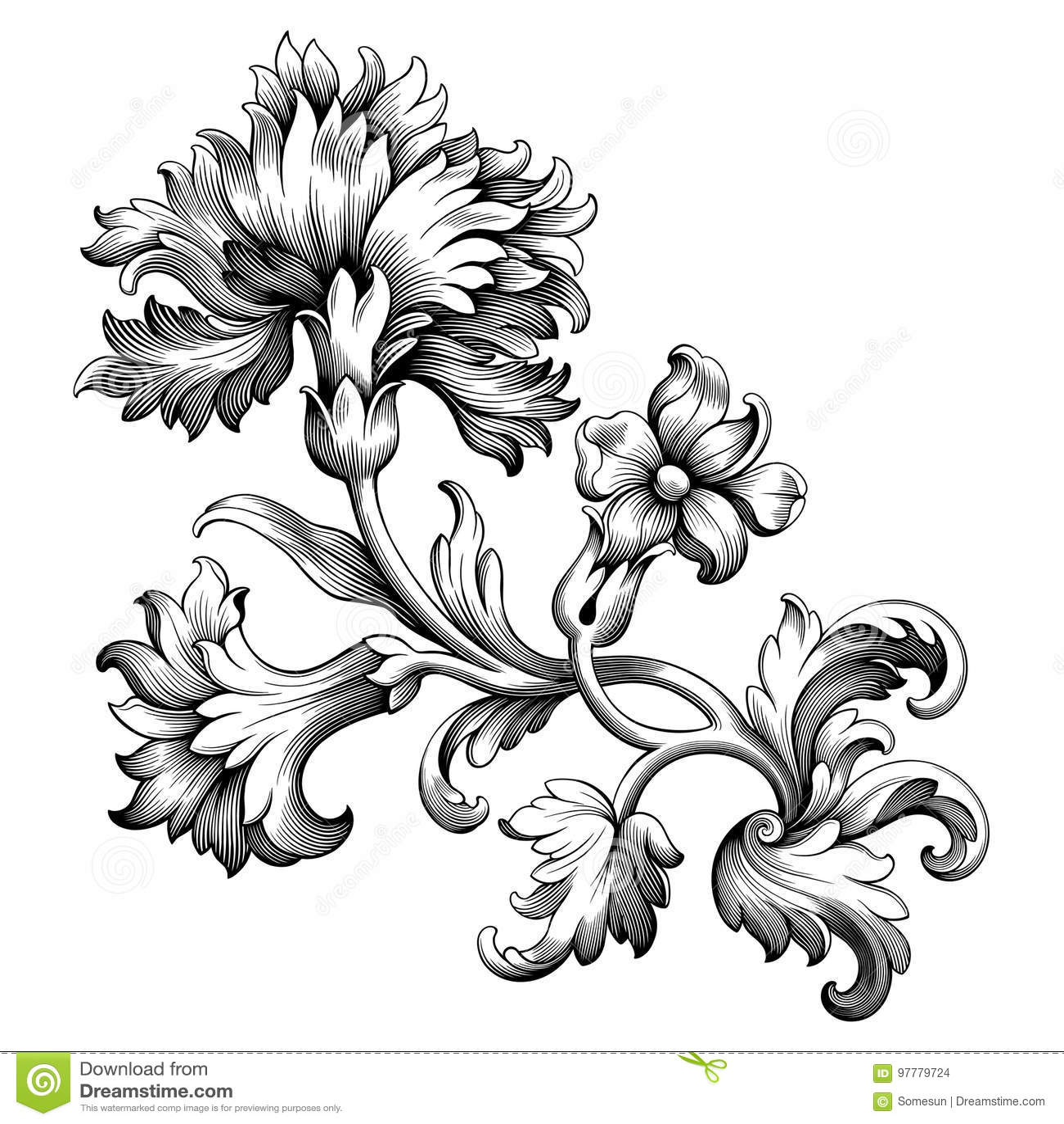 La Voluta Victoriana Barroca Del Ornamento Floral De La