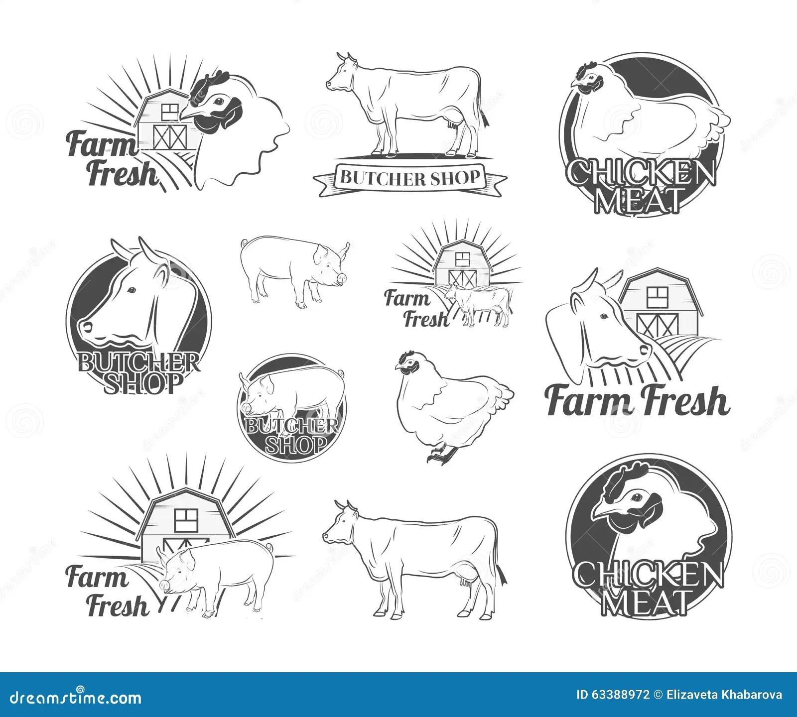 Labels Et Insignes Avec Une Boucherie Poulet Boeuf Porc