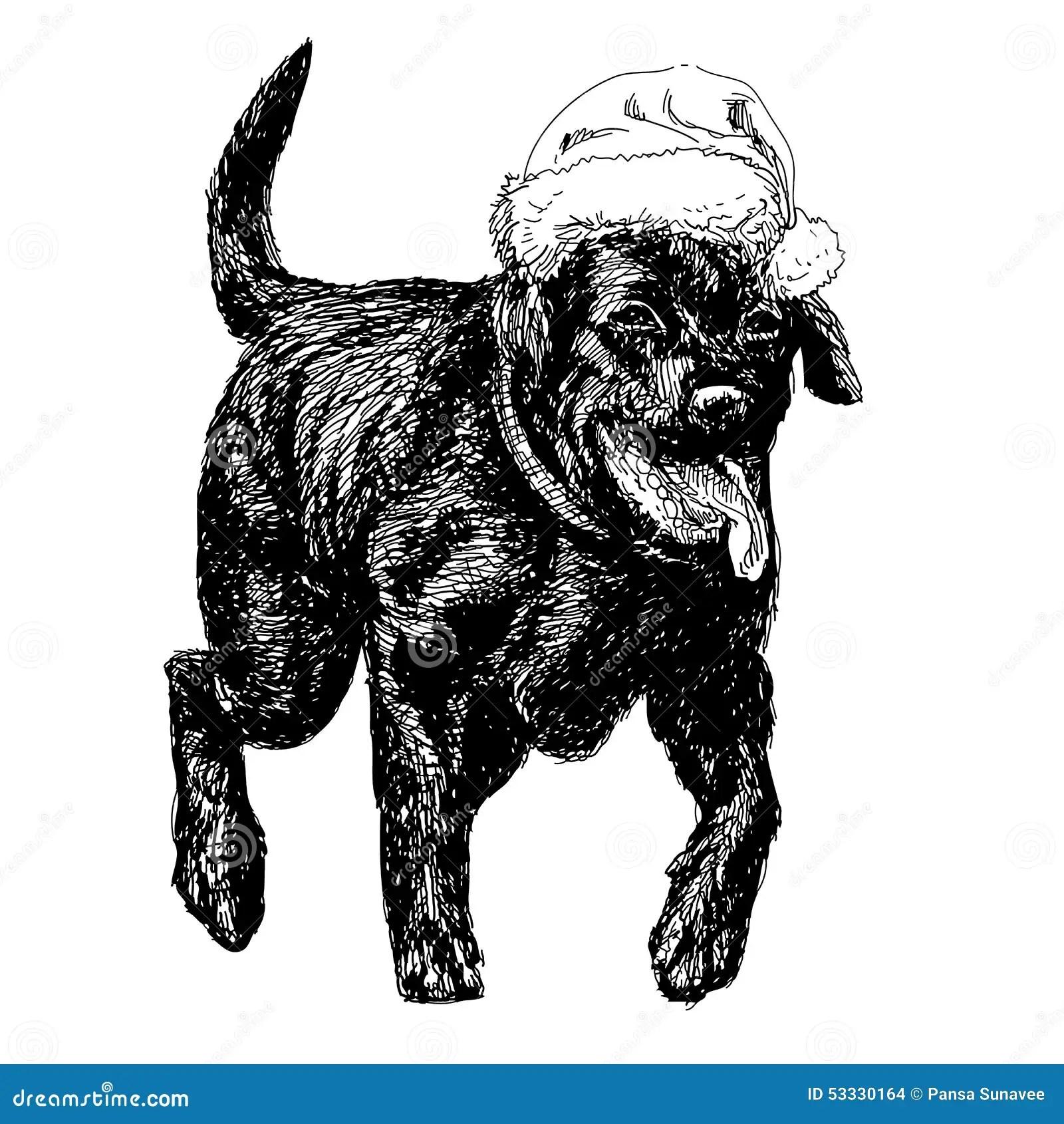 Labrador Retriever Stock Vector Image 53330164