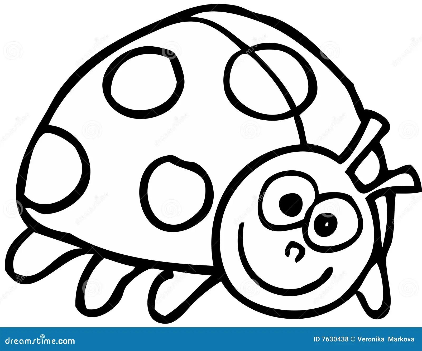 Ladybird Stock Vector Illustration Of Black White