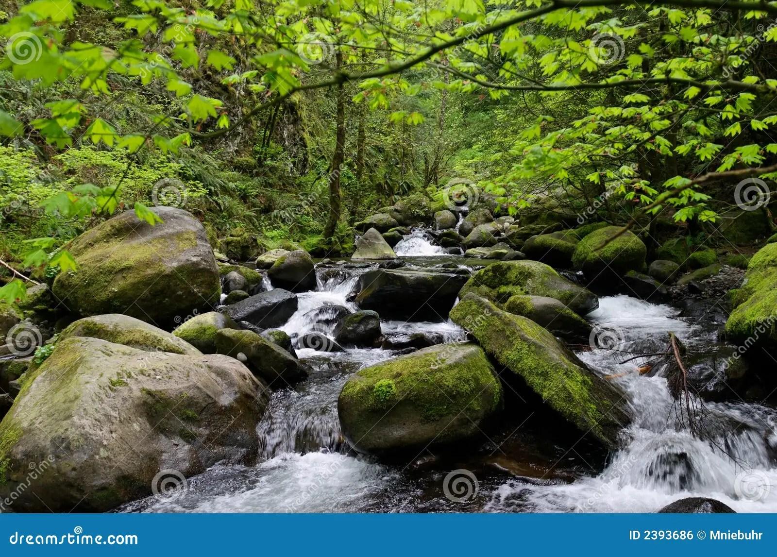 Large Round River Rocks
