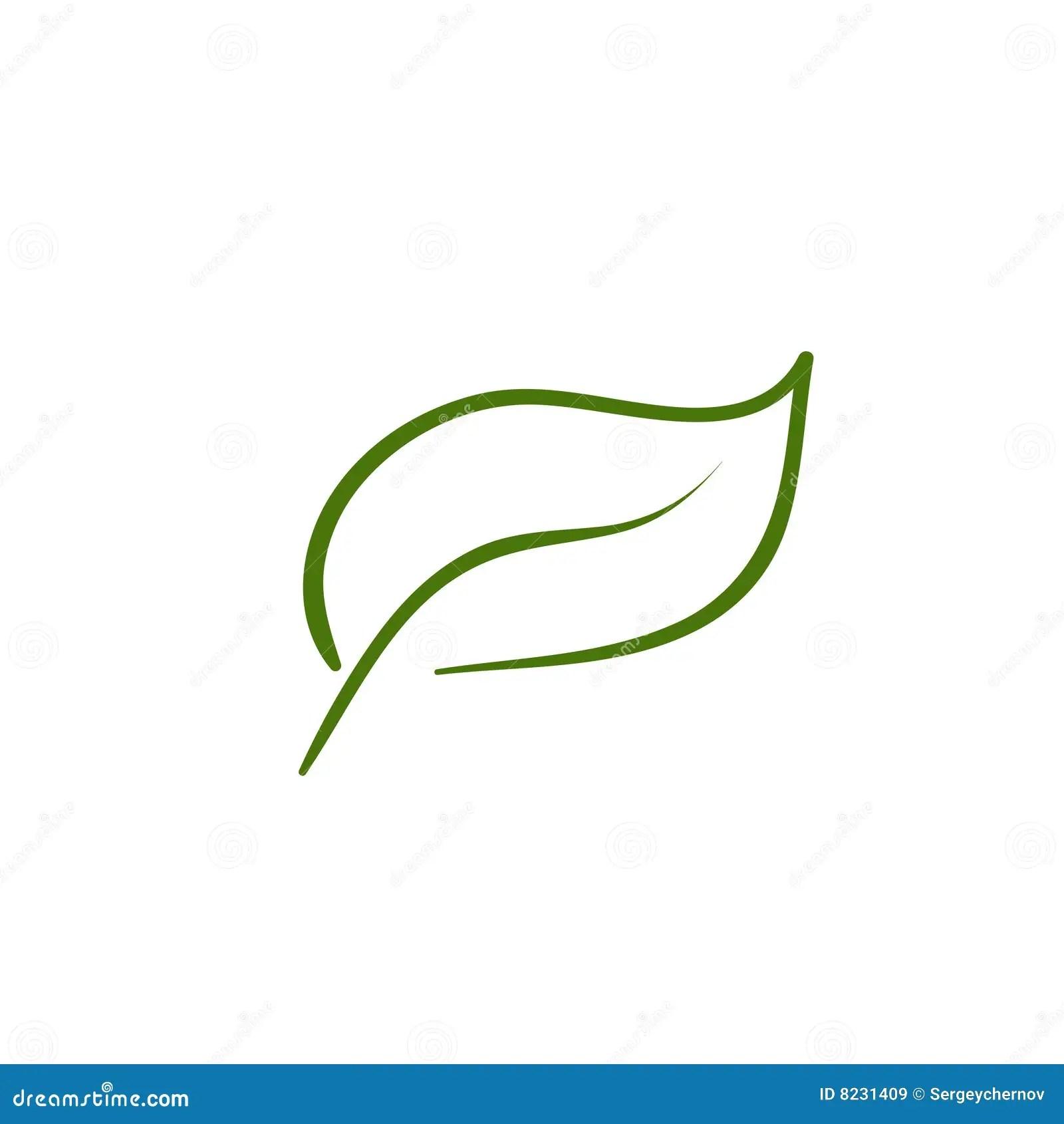 Leaf Artistic Line Stock Vector Illustration Of Natural