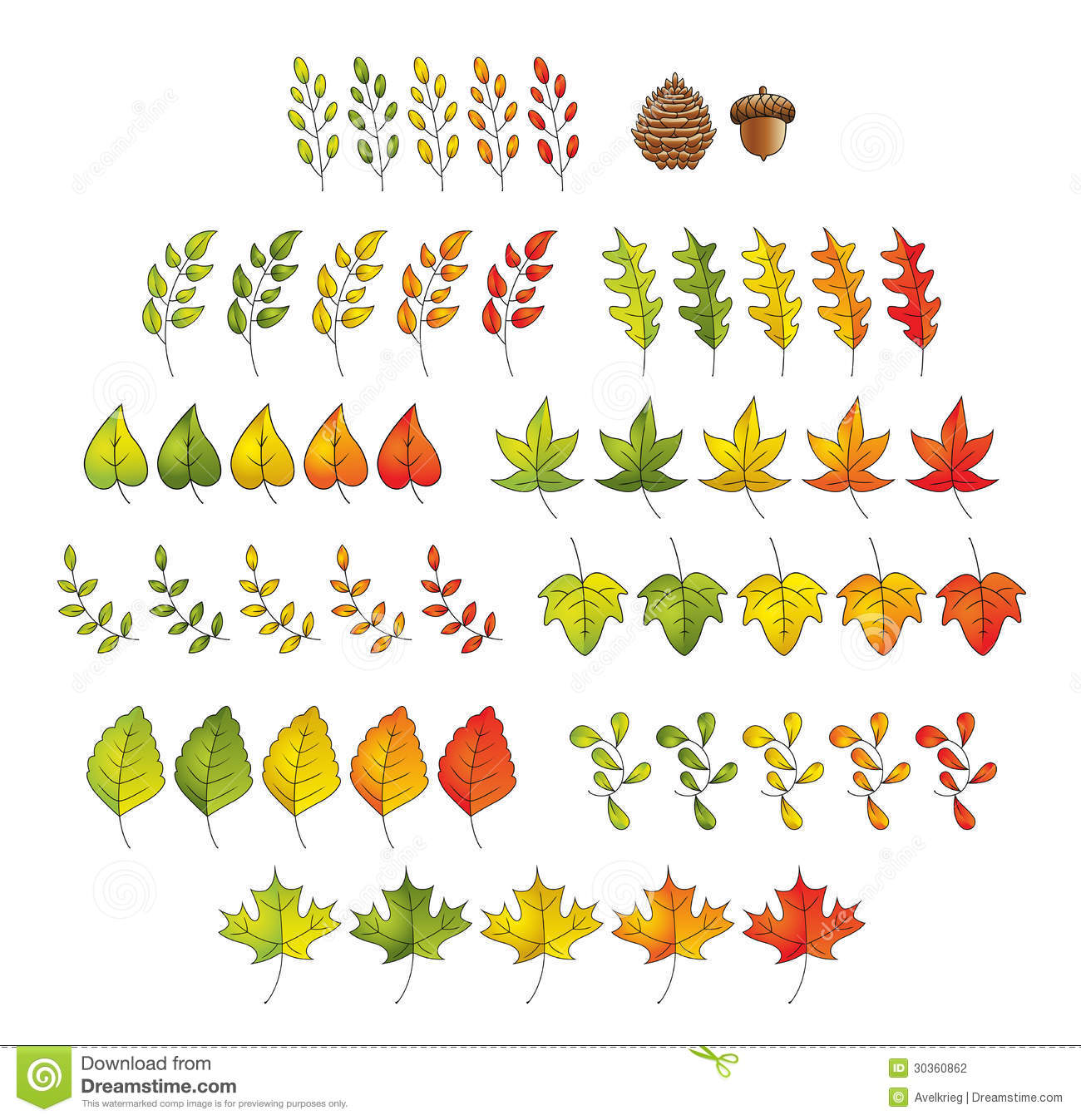 Leaf Set Stock Photography