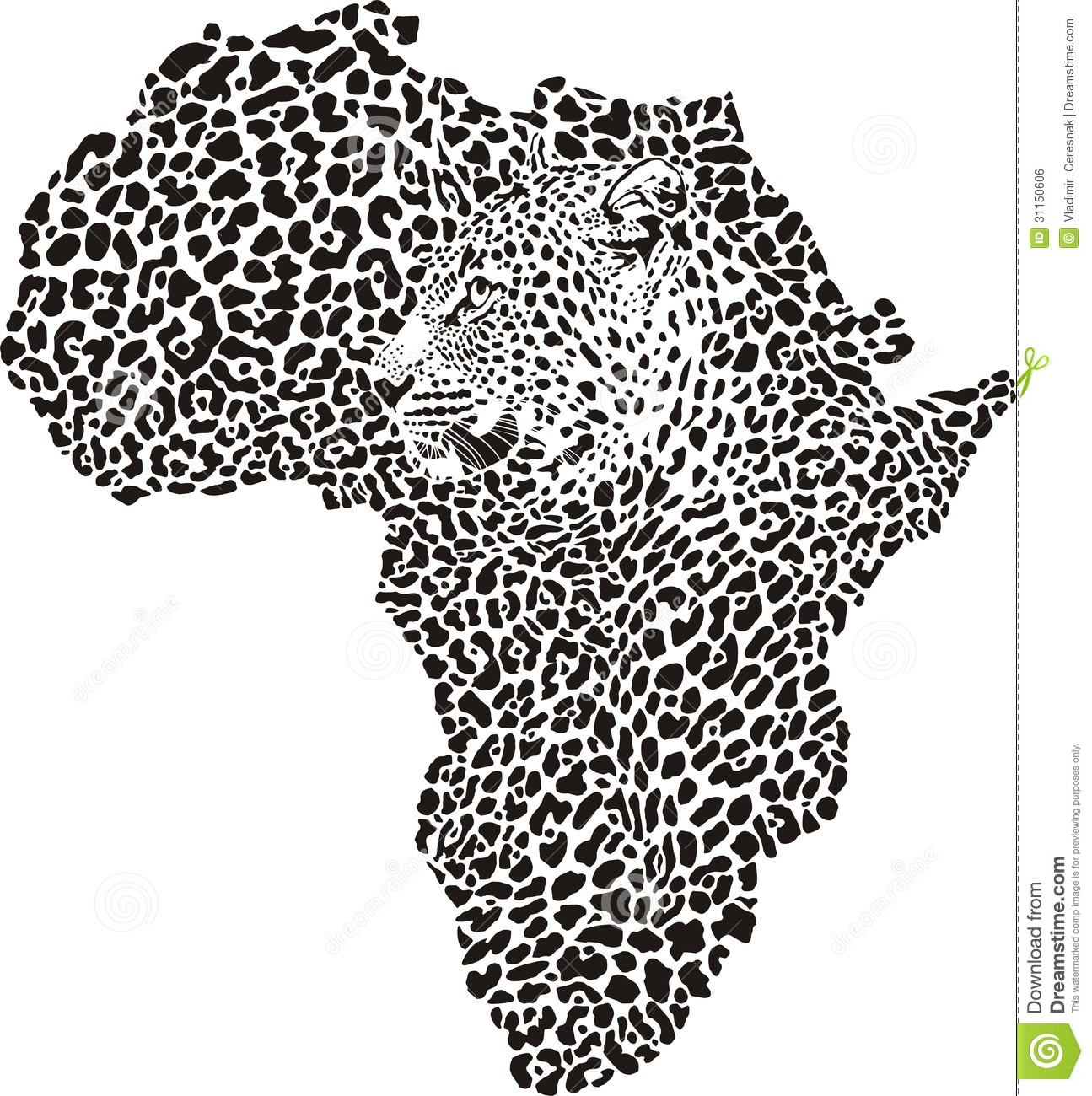 Leopard Skin And Head In Silhouette Africa Royalty Free