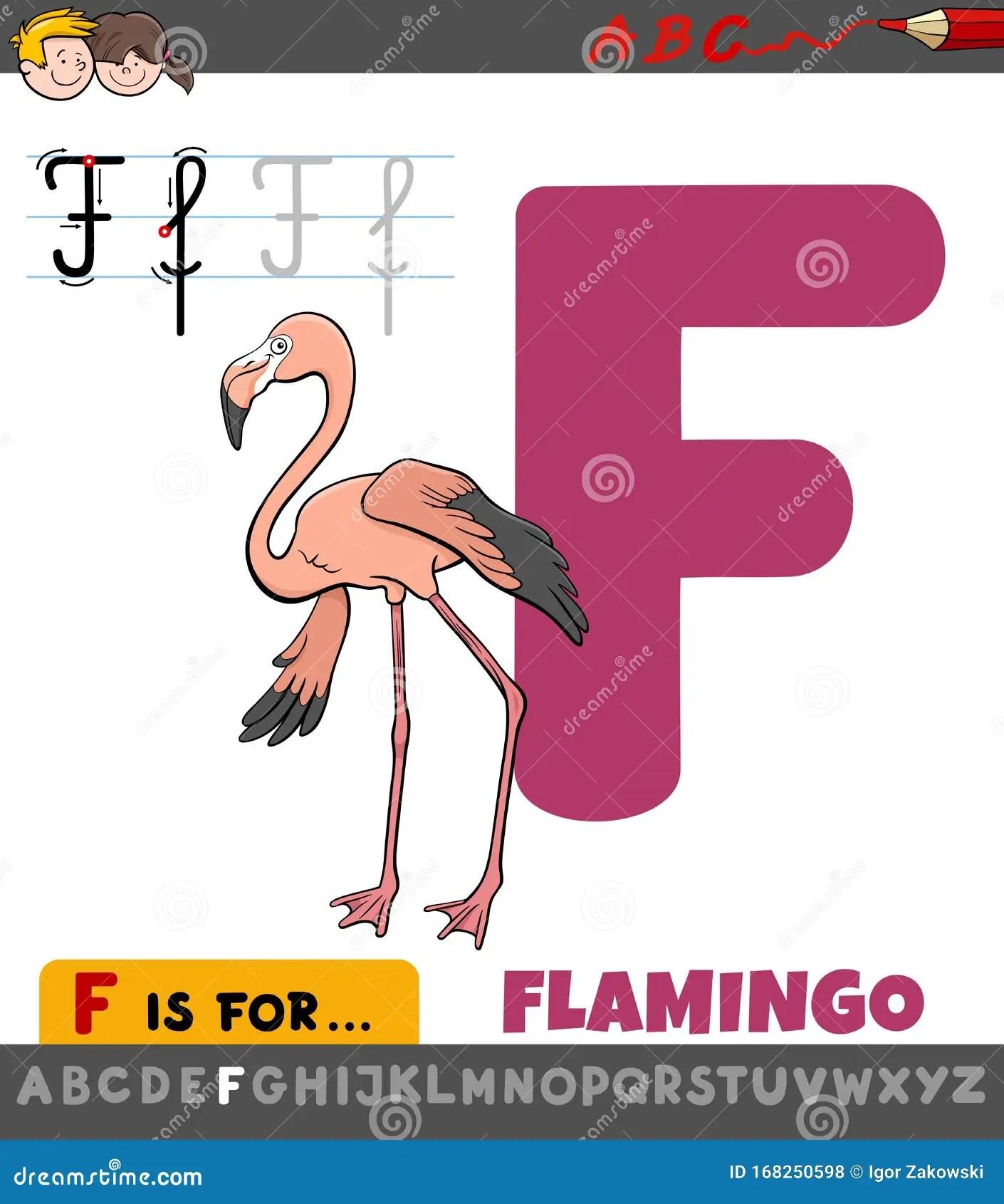 Letter F Worksheet With Cartoon Flamingo Bird Stock Vector