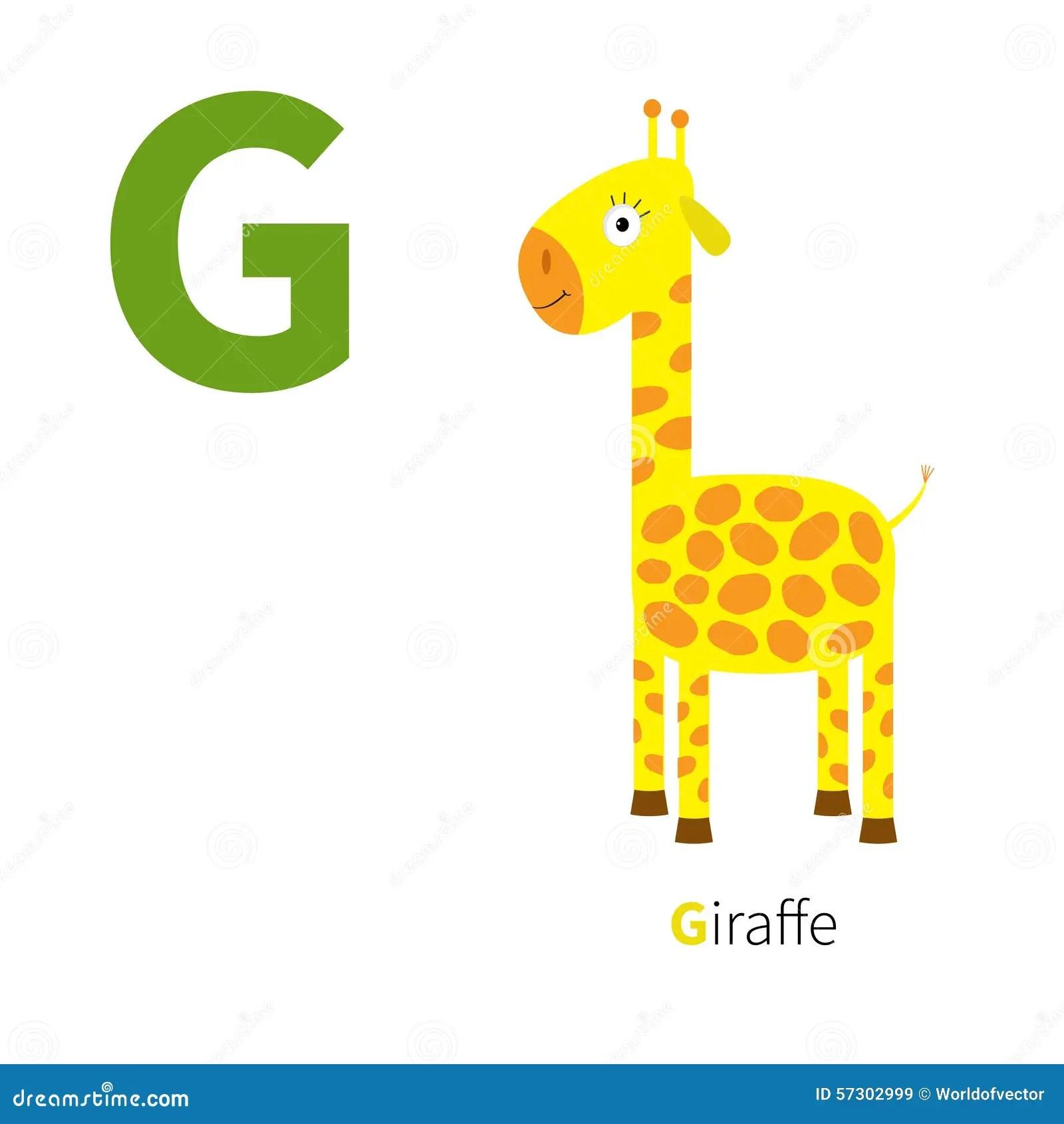 Letter G Giraffe Zoo Alphabet English Abc With Animals