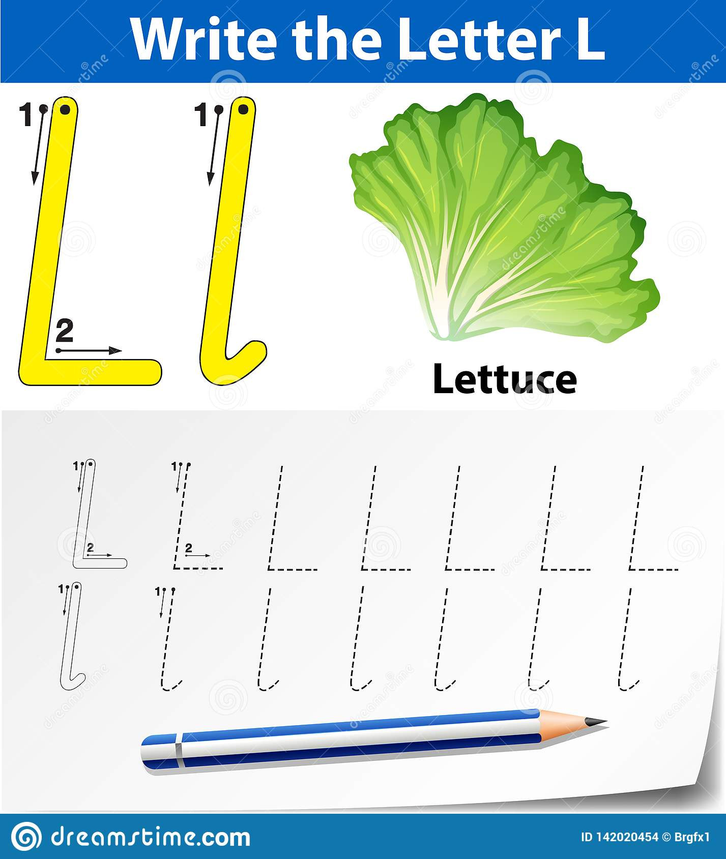 Letter L Tracing Alphabet Worksheets Stock Vector