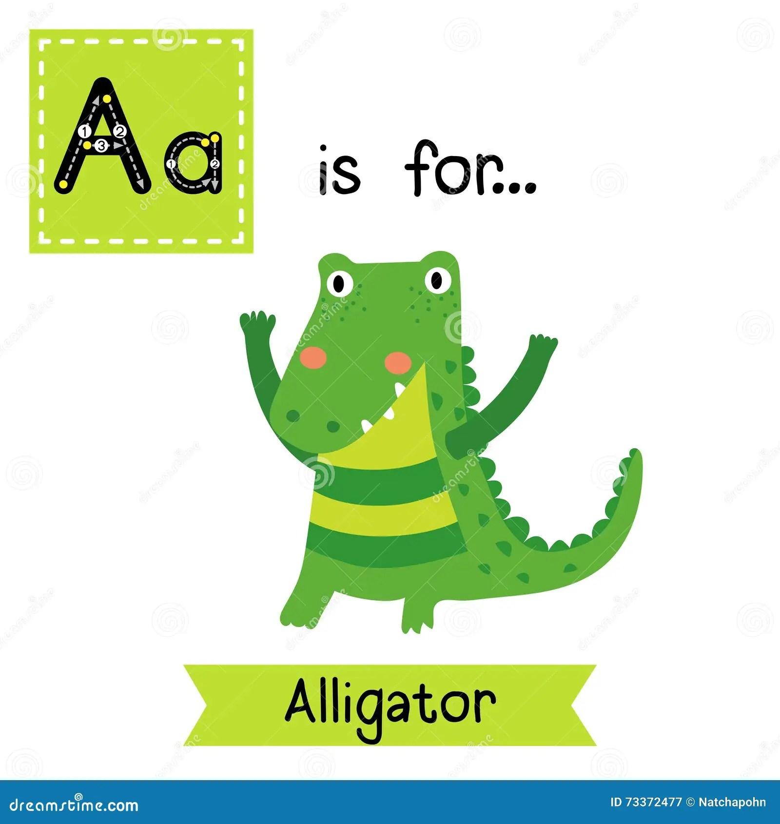 Learn English Kids Animal Maker For