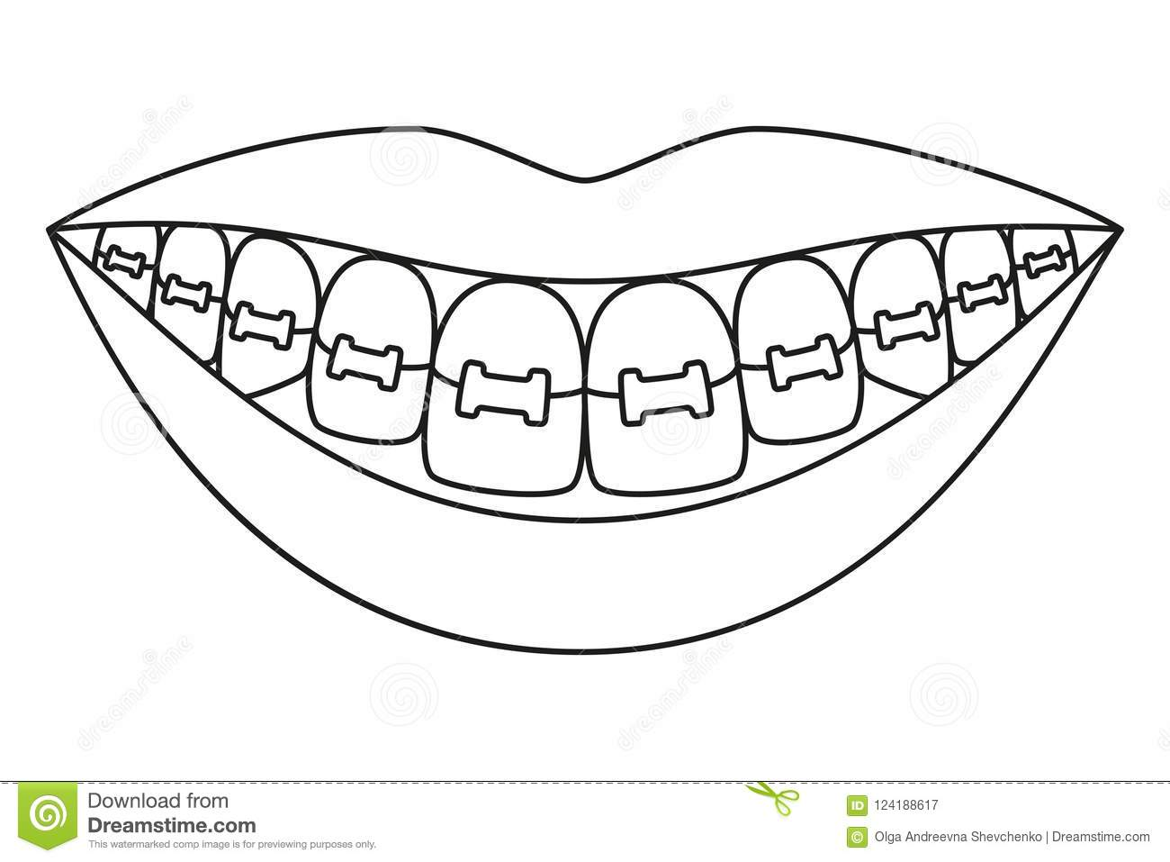 Dentition Cartoon Vector