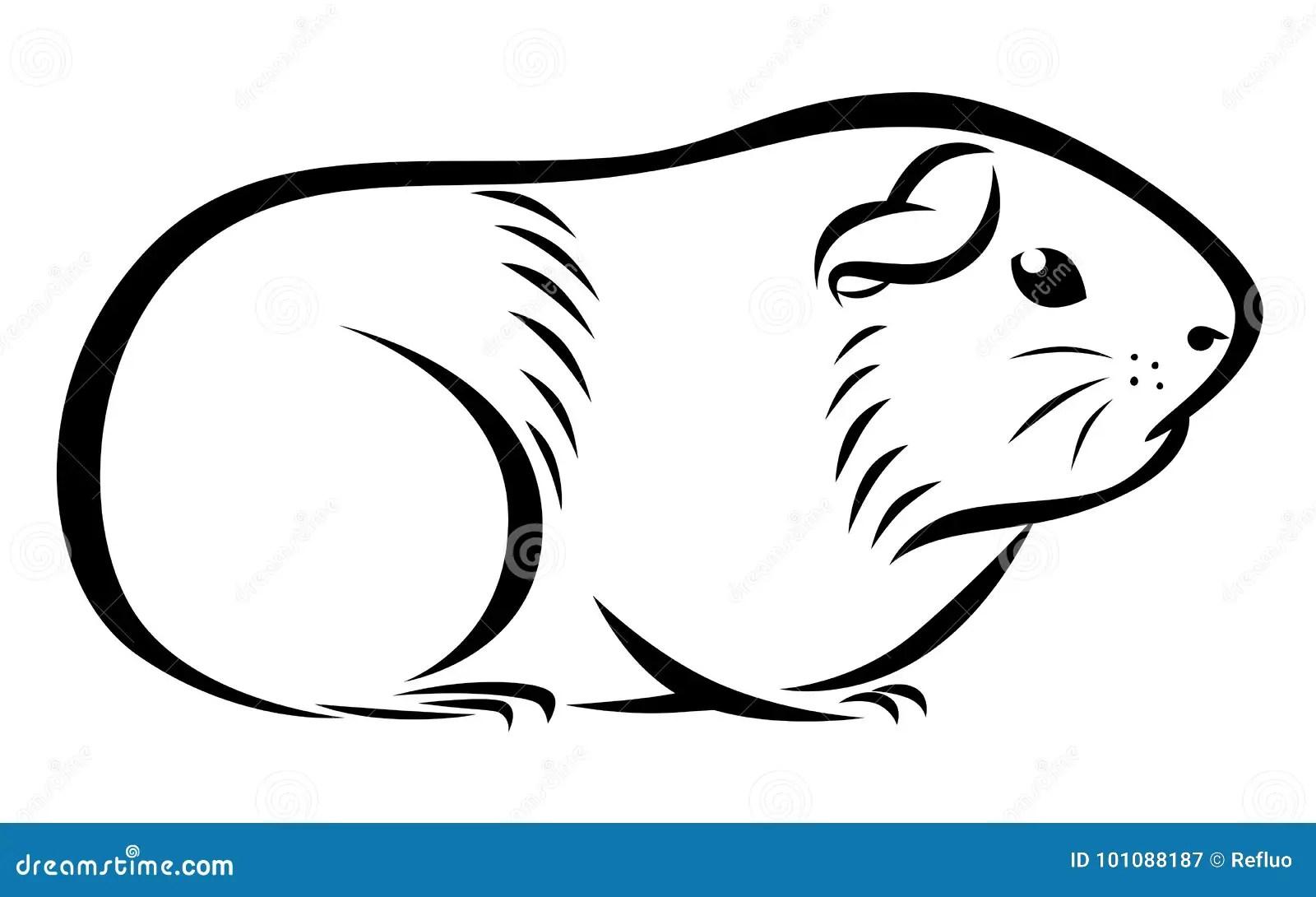 Line Ink Guinea Pig Stock Vector Illustration Of Animal