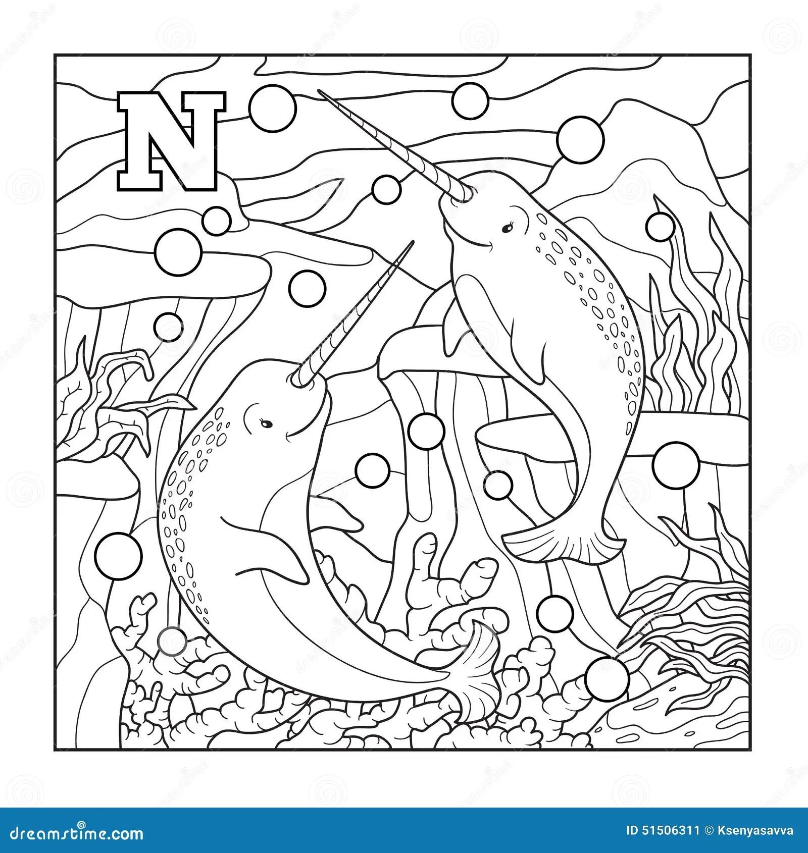 Livre De Coloriage Narval Illustration Sans Couleur