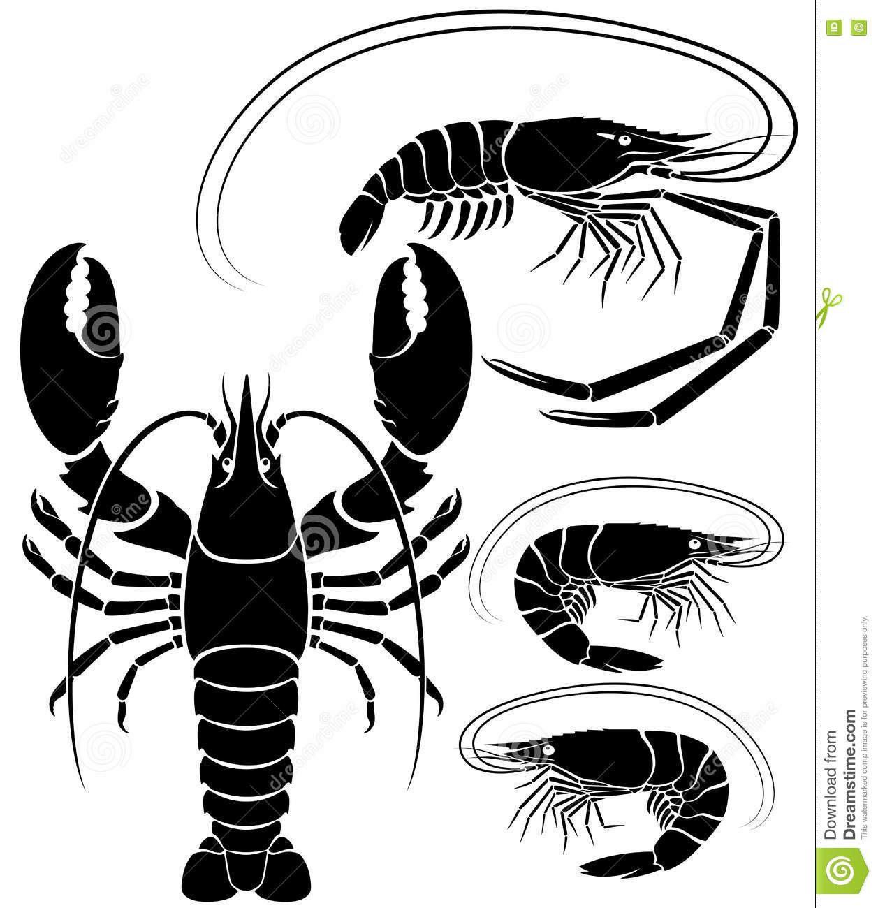 Lobster Shrimp And Prawn Vector Illustrations Stock