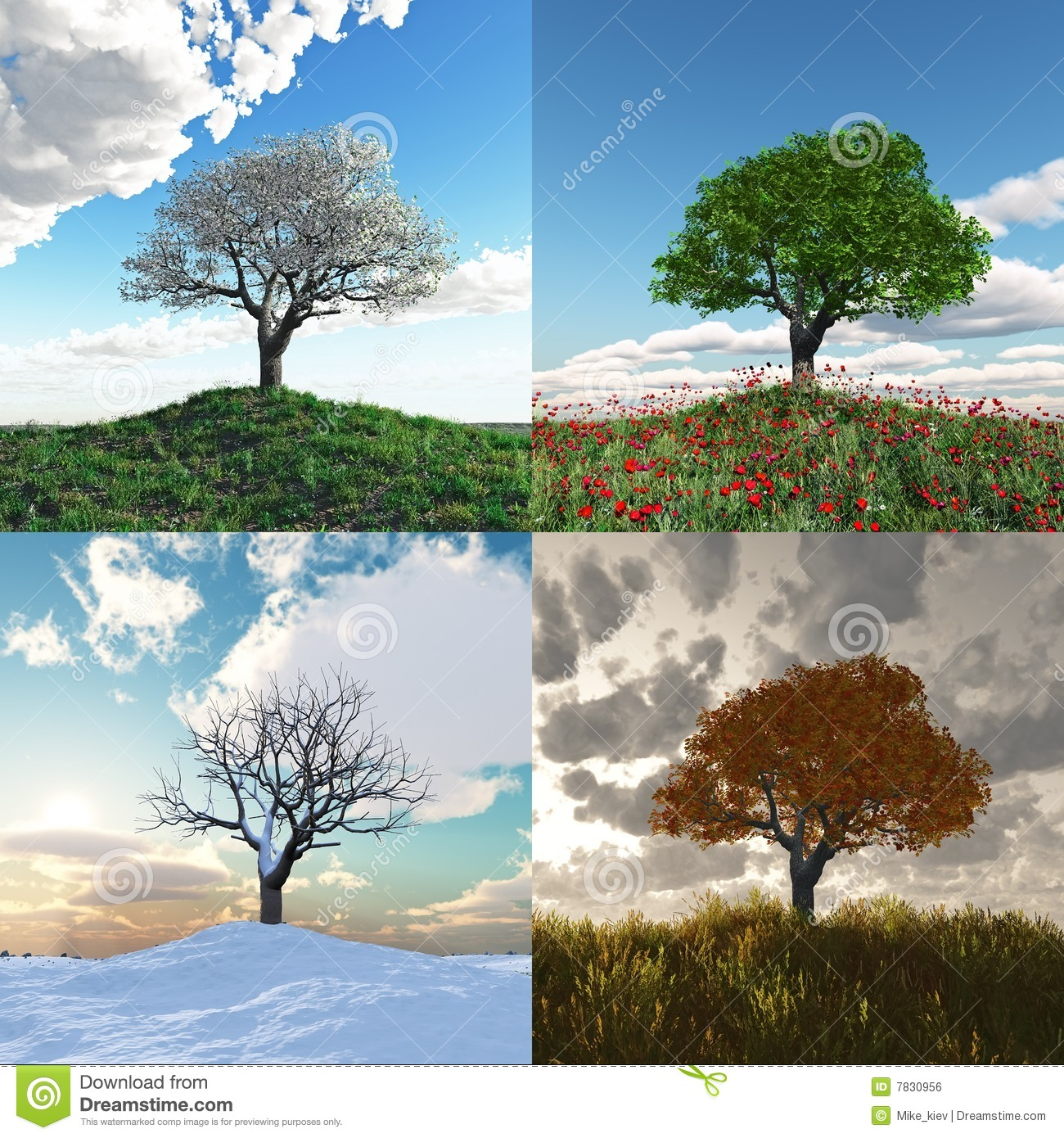 Lonely Tree At Four Seasons Time Lapse Stock Illustration