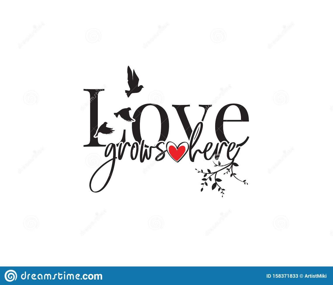 Download Love Grows Here, Vector With Hearts Illustration And Birds ...