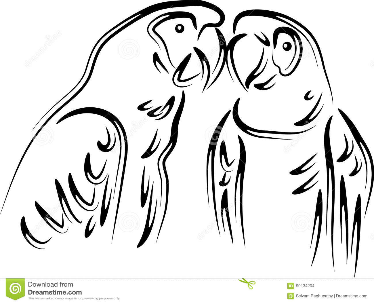 Love Parrots Stock Vector Image Of Animal Illustrated