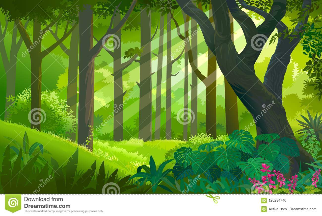 Dense cartoon forest with trees, bushes, spruces an. Lush Dense Green Forest With Sun Rays Touching The Plants And Trees Stock Vector Illustration Of Botany Background 120234740