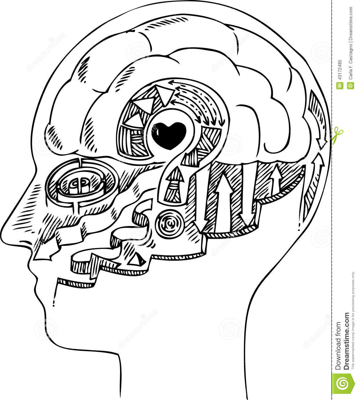 Man Profile With Brain And Heart Stock Vector