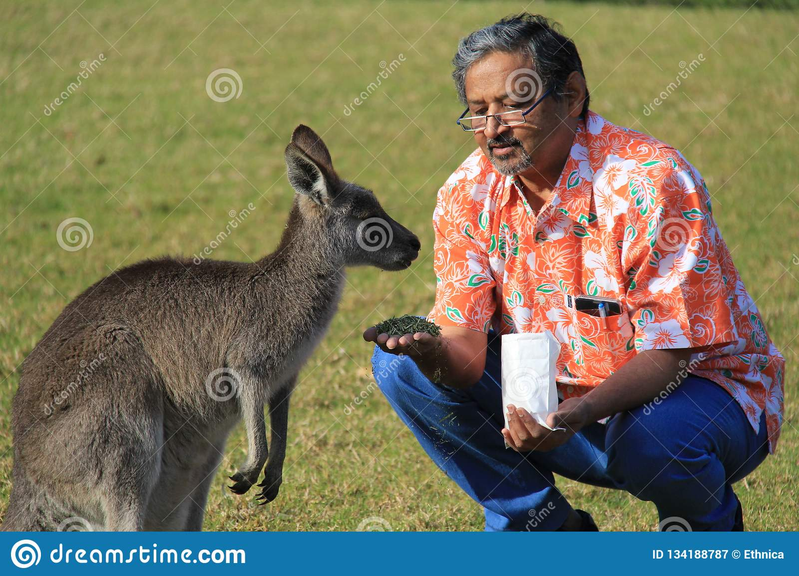 Mankind And Animal Kingdom Relationship Stock Image