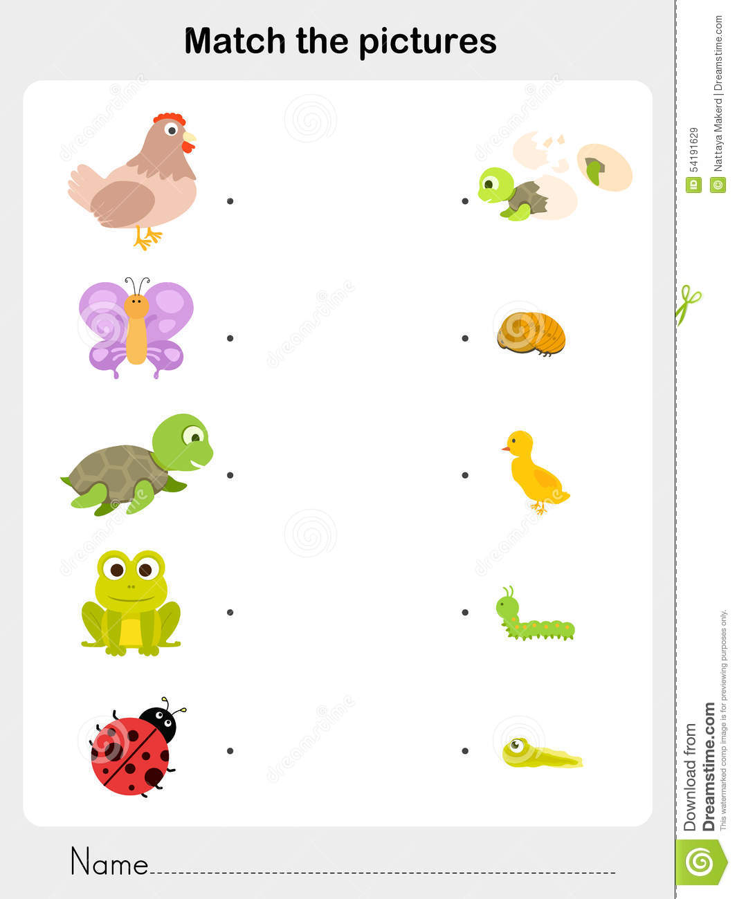 Preschool Matching Worksheet Animal Habitats